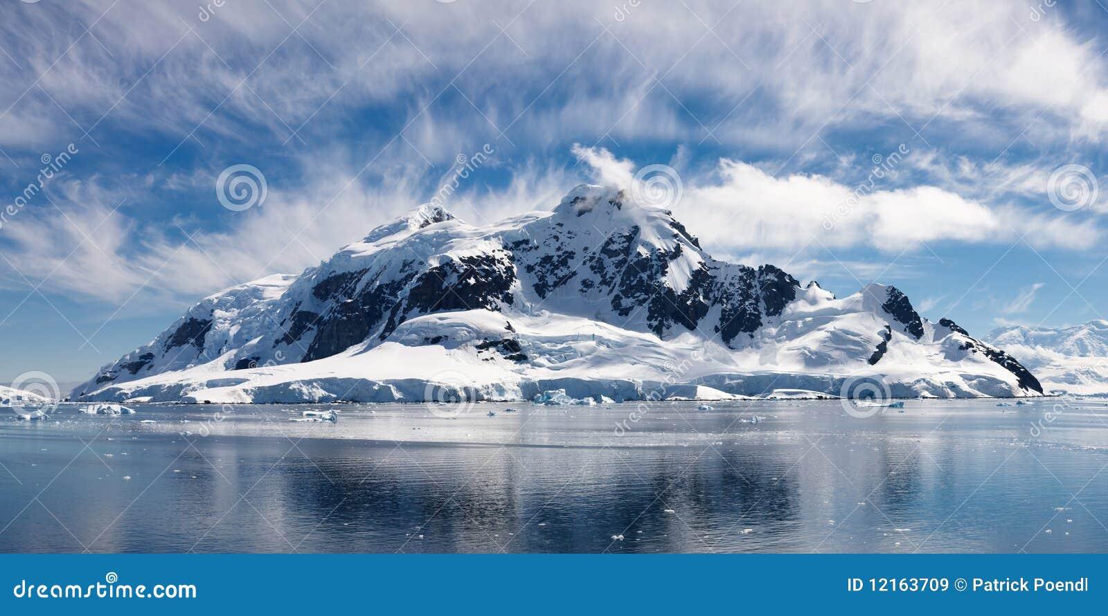 Louro do paraíso, Continente antárctico - país das maravilhas gelado majestoso