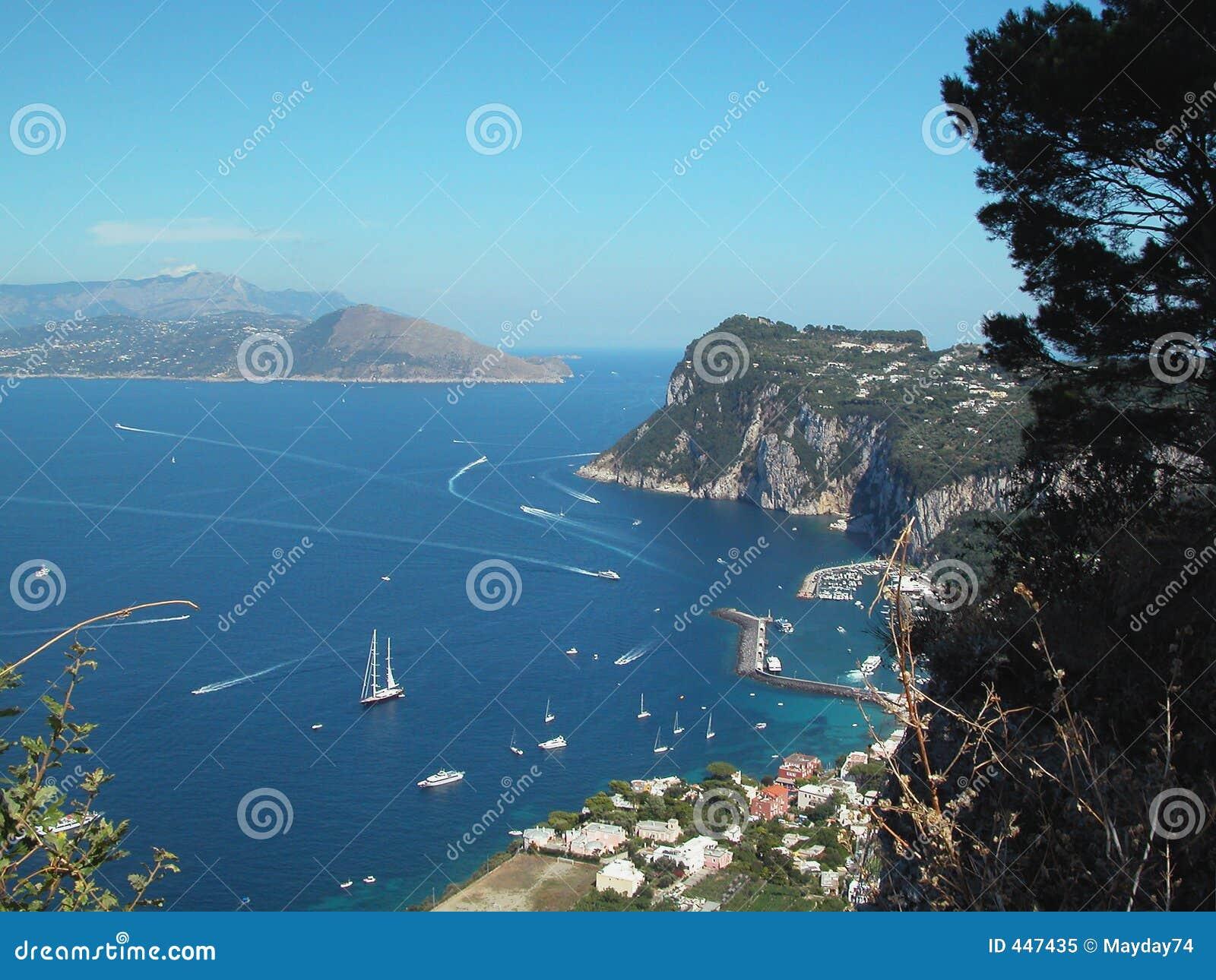 Louro Italy de Capri