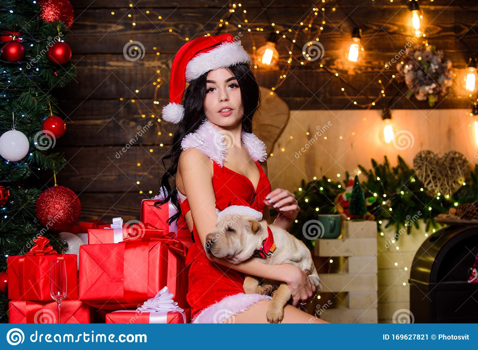 Sexy Xmas Pictures