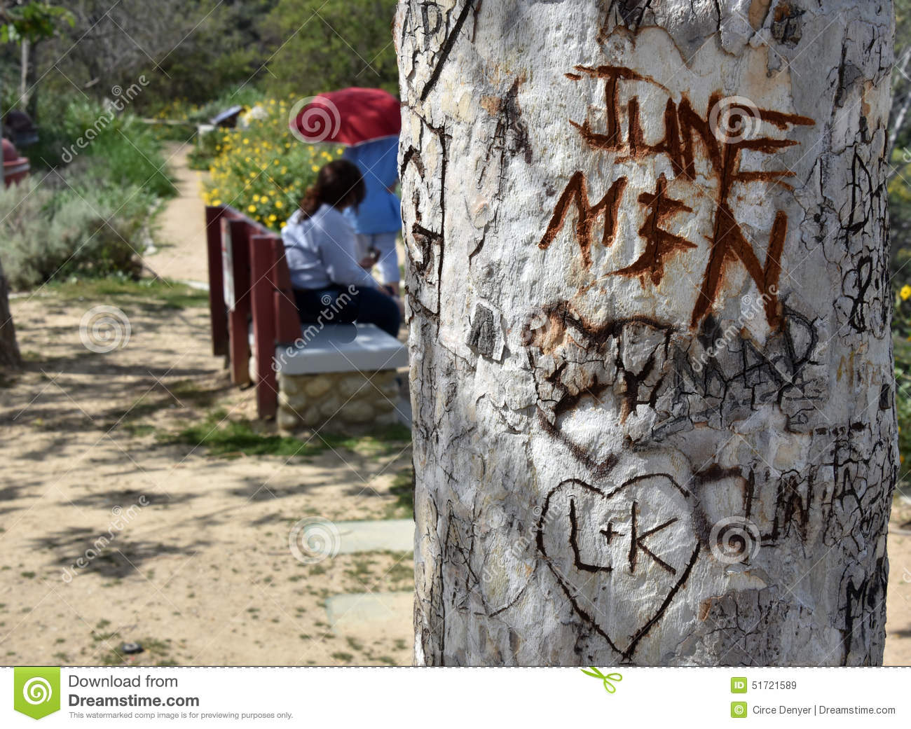 Love Expressed Initials On Trees Stock Image Image Of Initials
