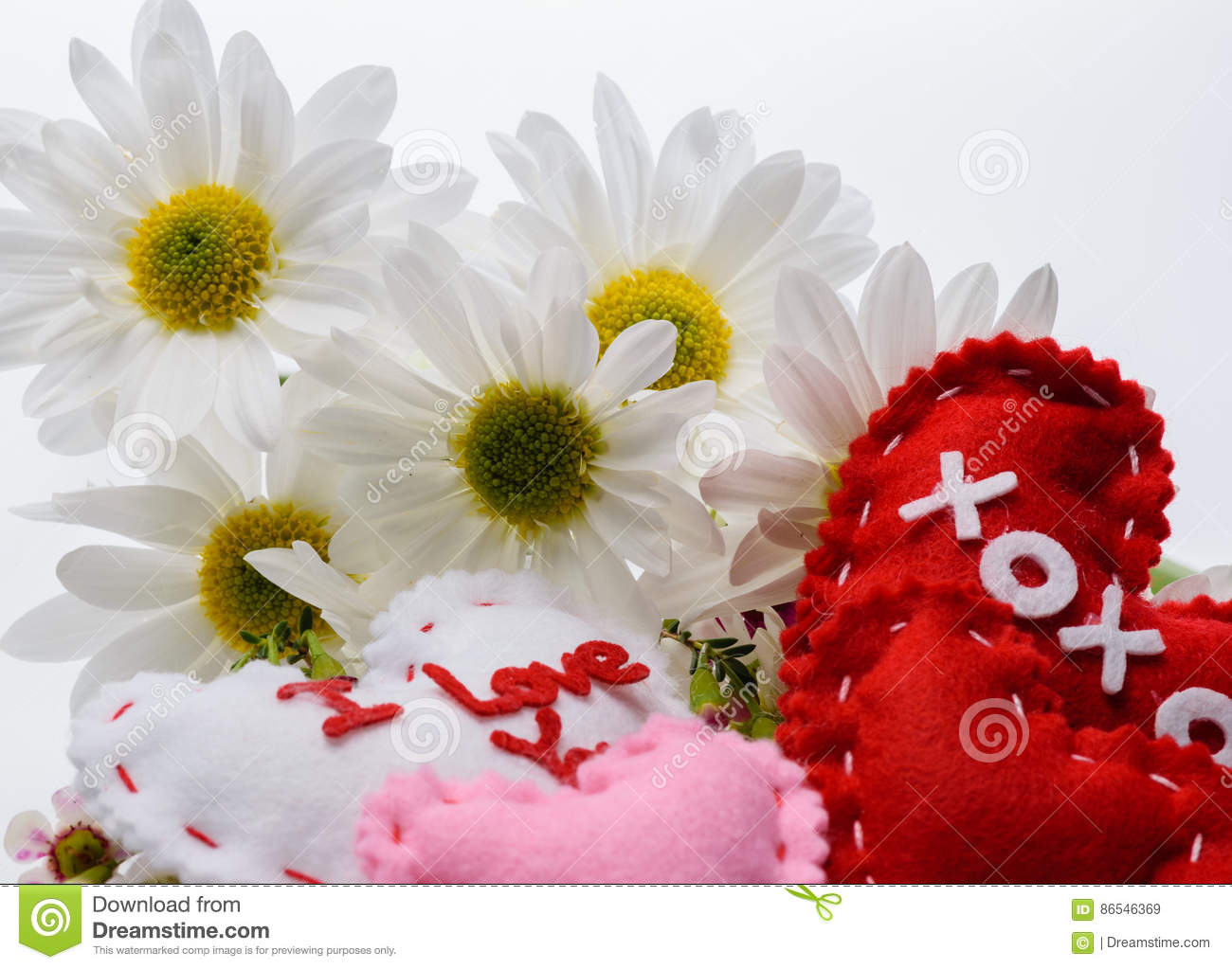 Love Flowers And Messages With Daisies Stock Image Image Of