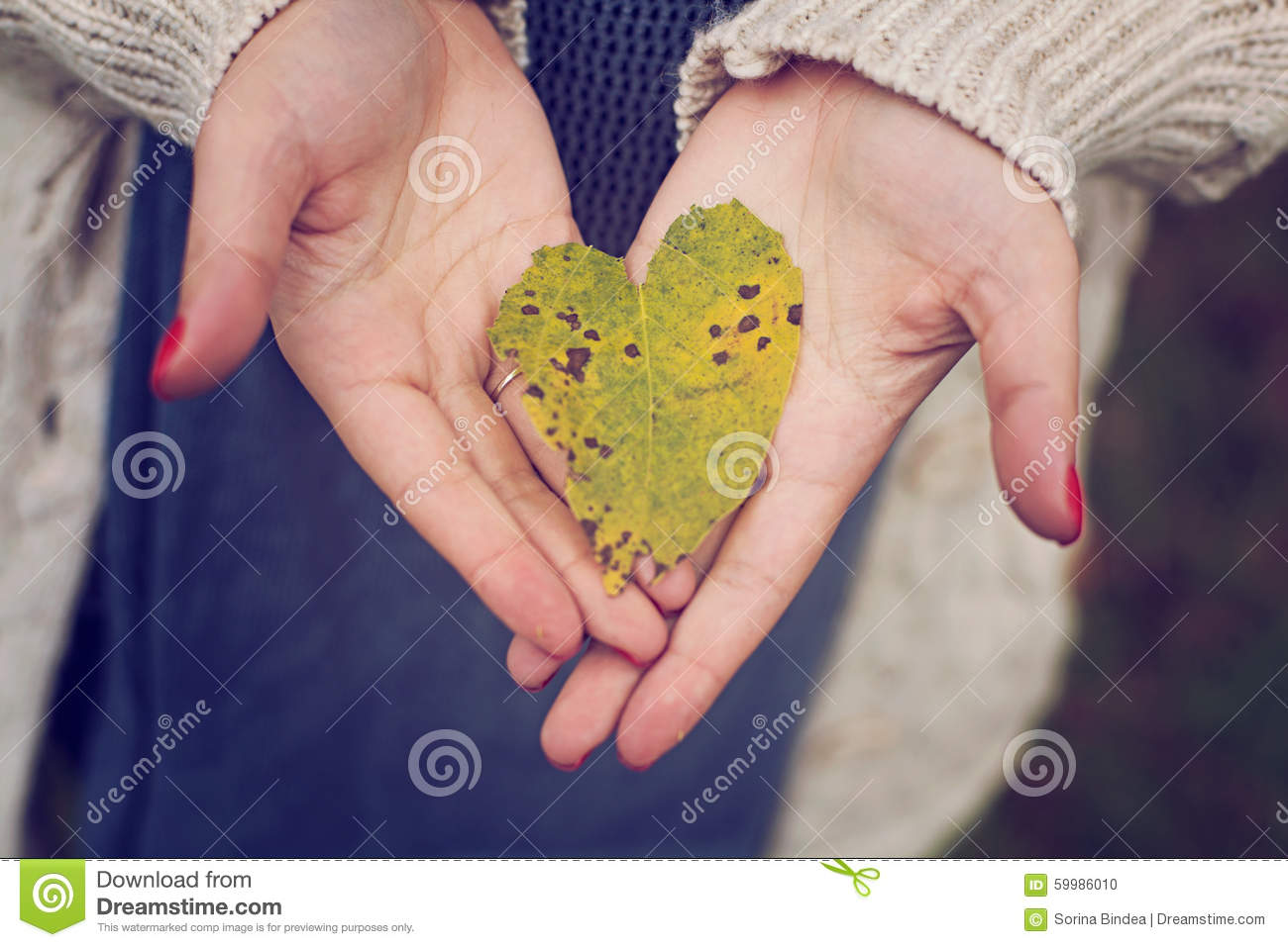 Love heart leaf