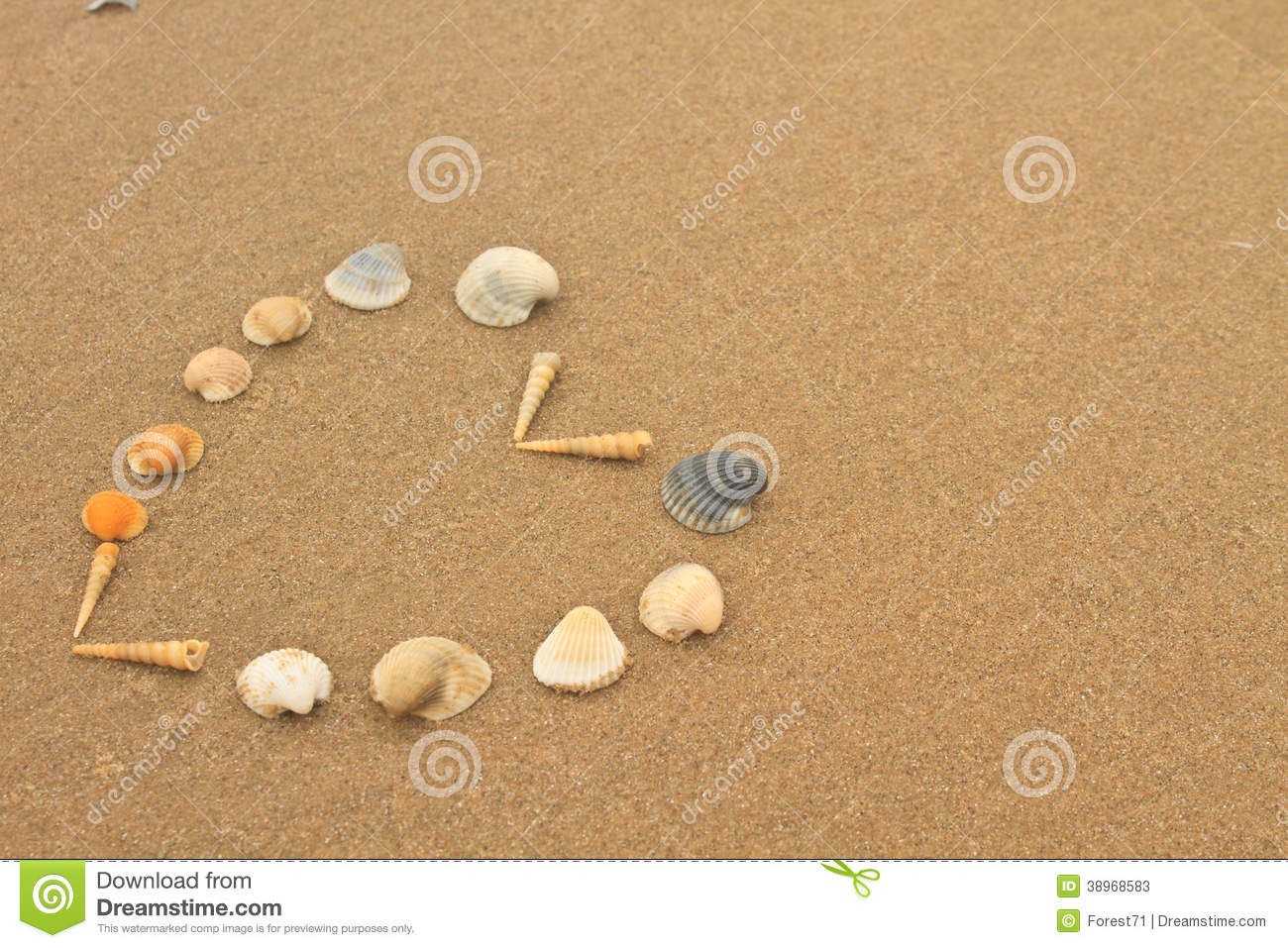 Love heart made of shells on beach stock photo image for What are shells made of