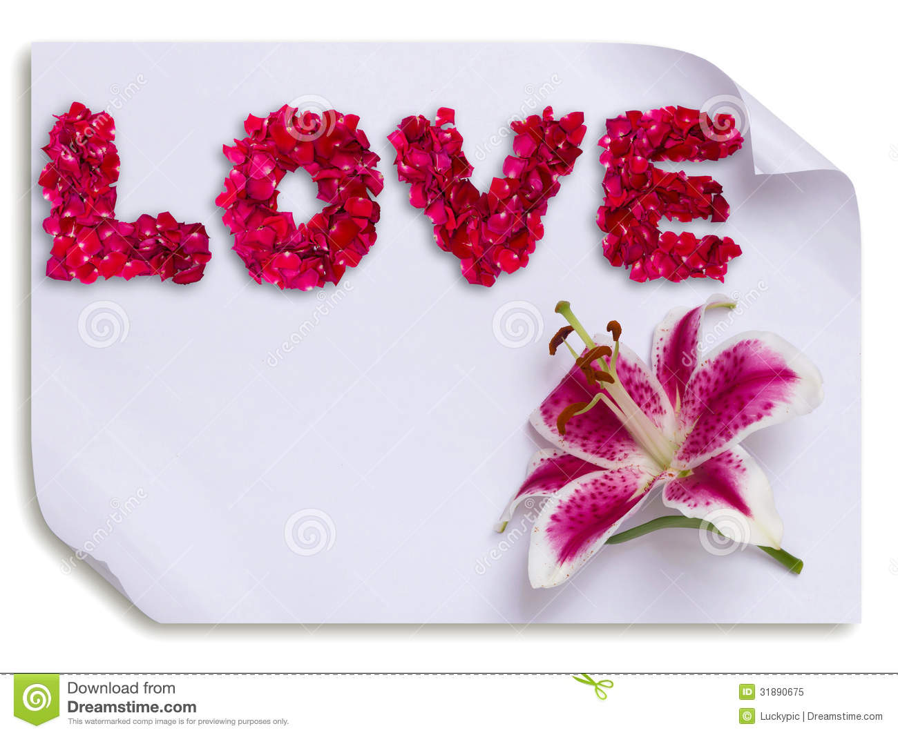 Beautiful love made from red rose petals and lily flower on paper.
