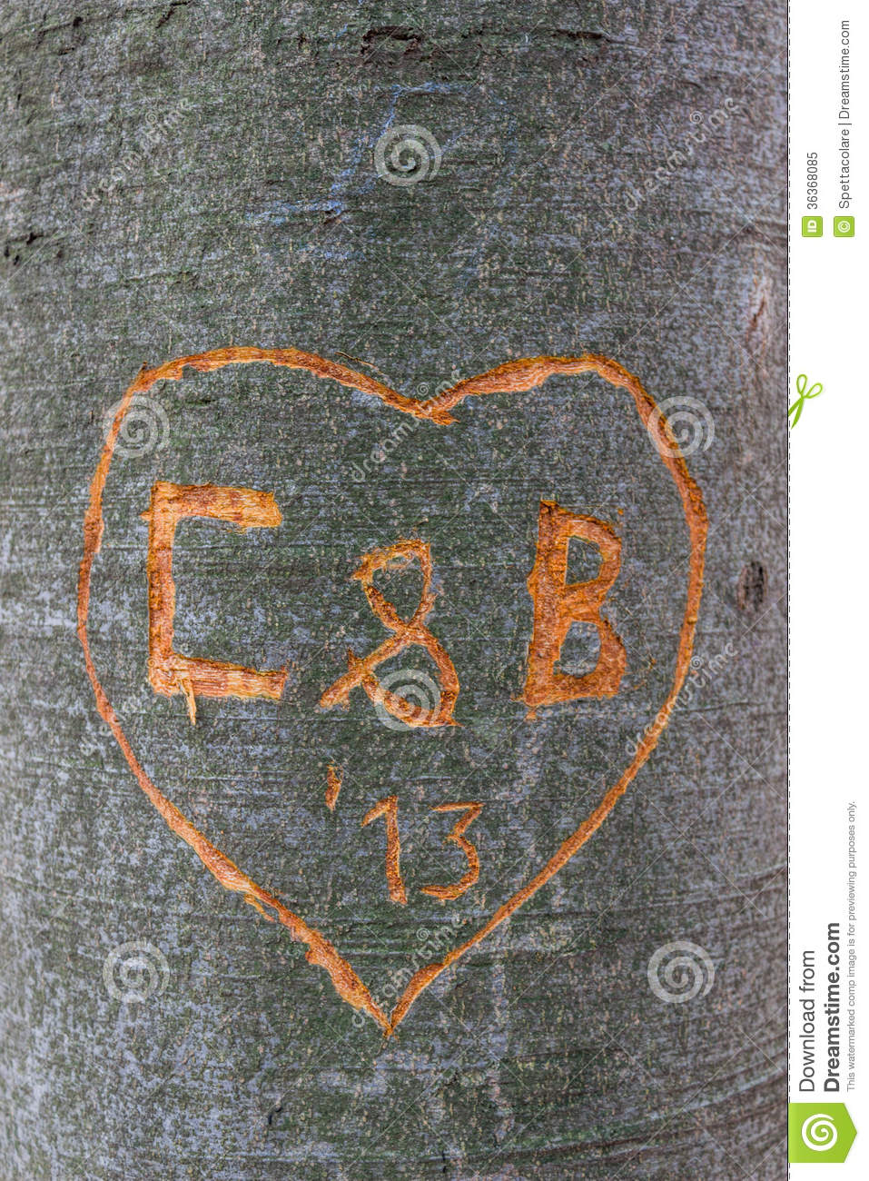Love message carved into tree royalty free stock photo