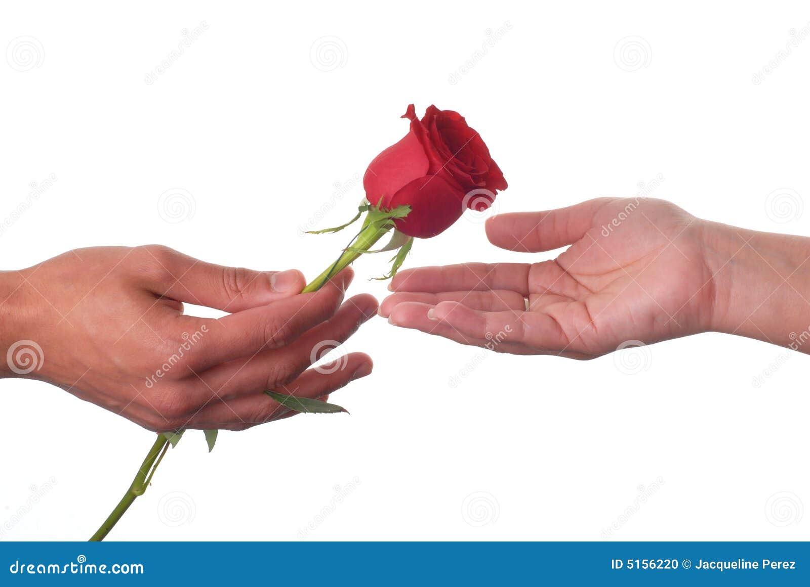 I Love You Heart Wallpaper 3d Love Rose Stock Photo ...