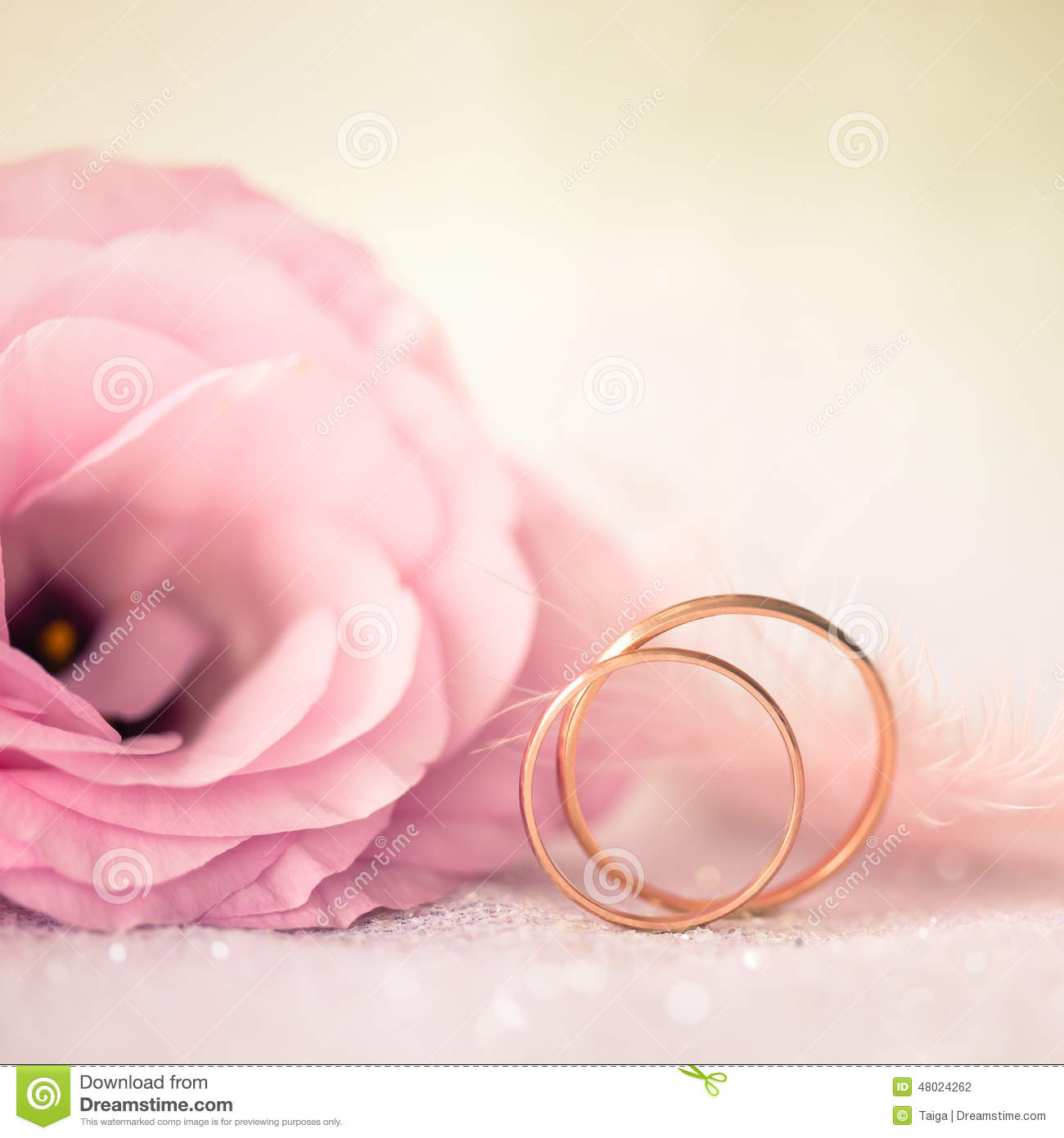 Love Wedding Background With Gold Rings And Beautiful Flower Stock ...