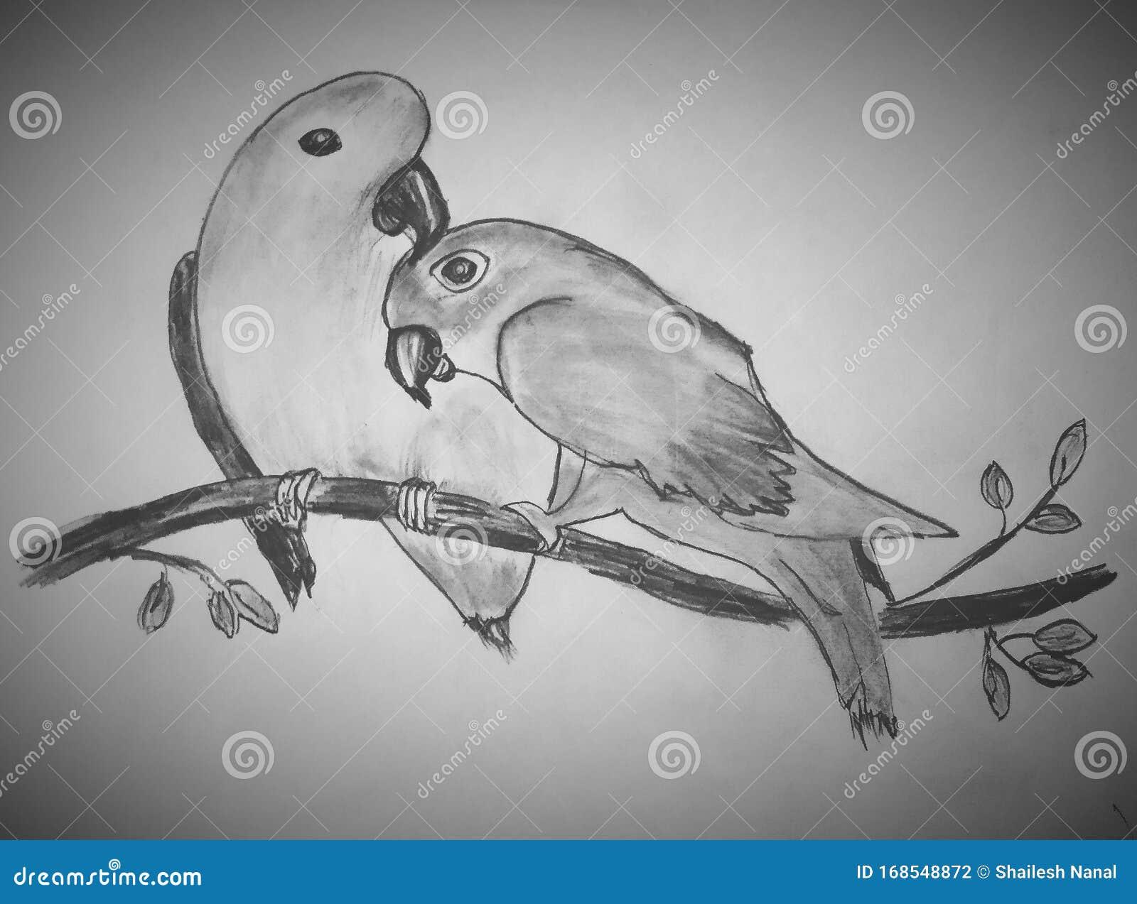 Lovebirds In Love Stock Illustration Illustration Of White 168548872