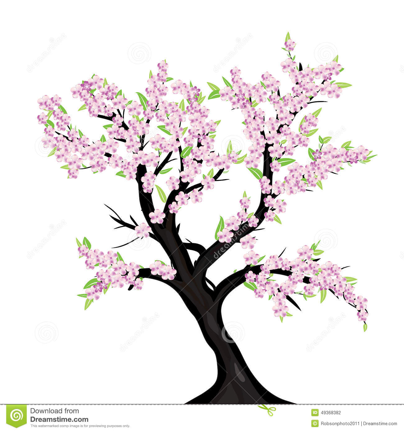 Lovely Cherry Blossom Tree Stock Illustration Illustration Of
