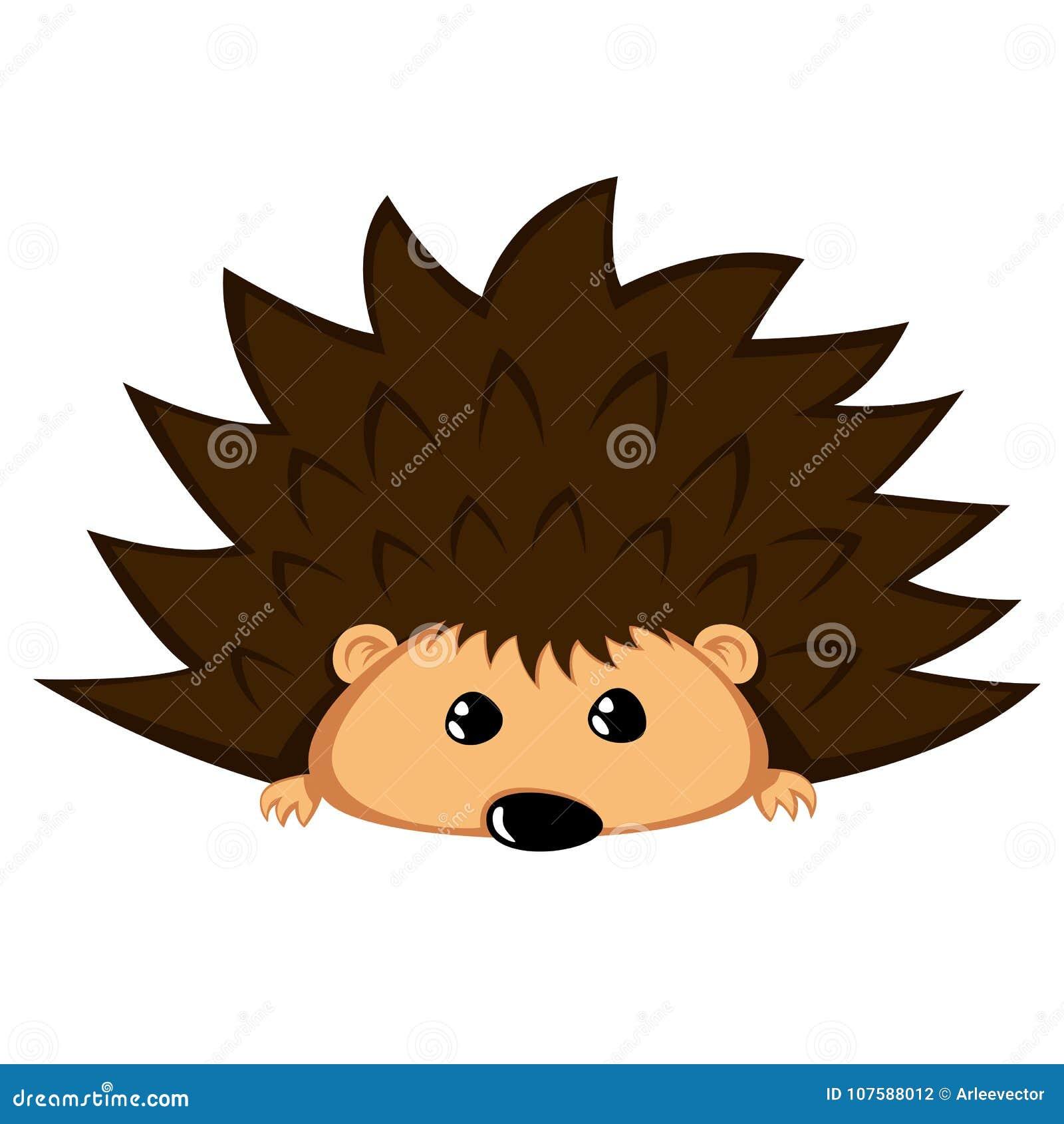 Lovely hedgehog - cute animal with begging eyes