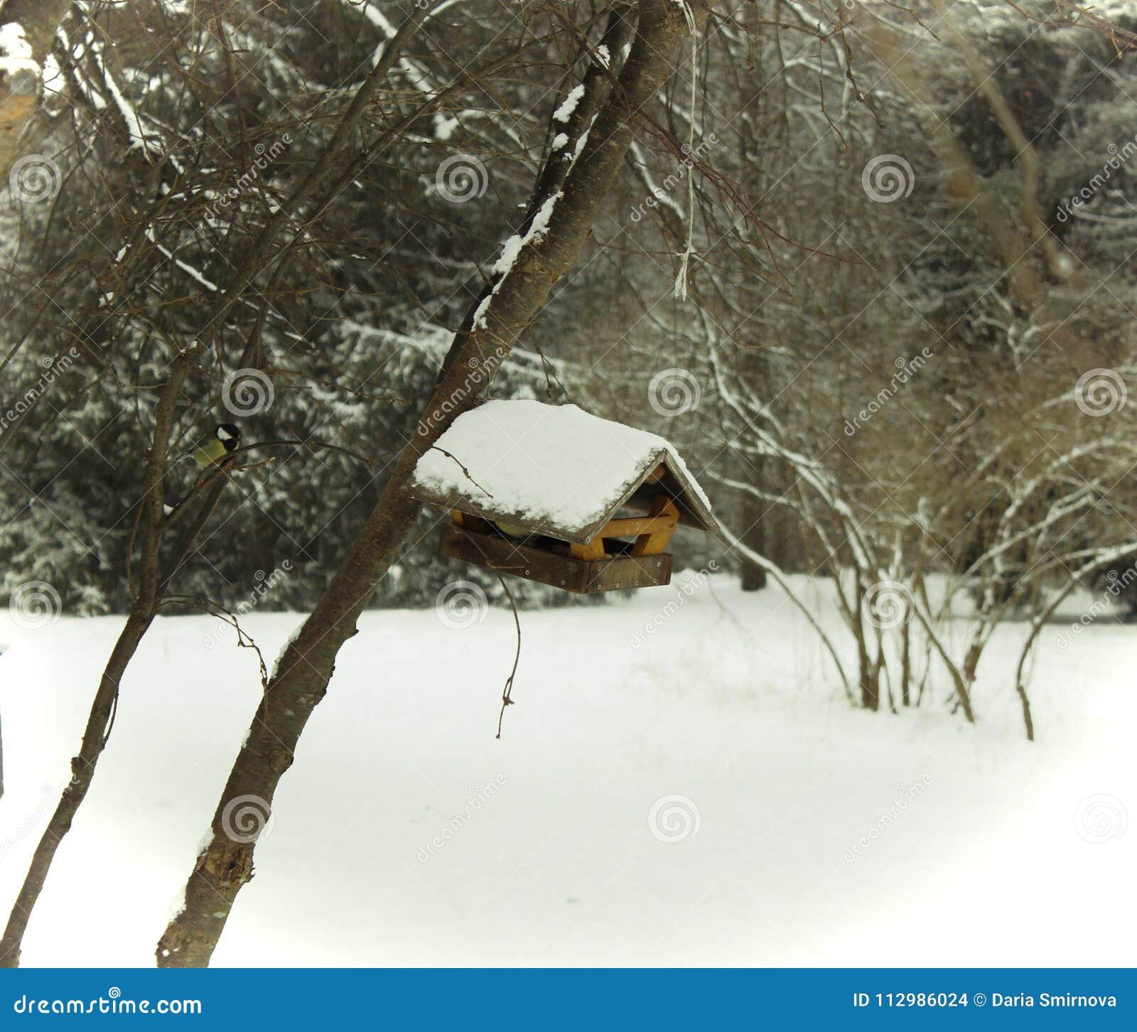 A lovely little house for a little bird