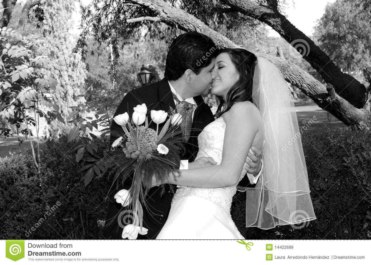 Lovely wedding kiss royalty free stock images image 14422689 royalty free stock photo junglespirit Images