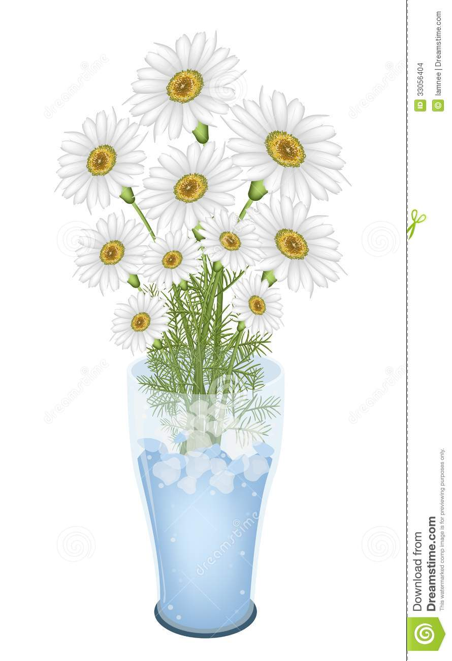 lovely white lovely white flowers in glass vase stock vector illustration of objectsequipment bloom 4428