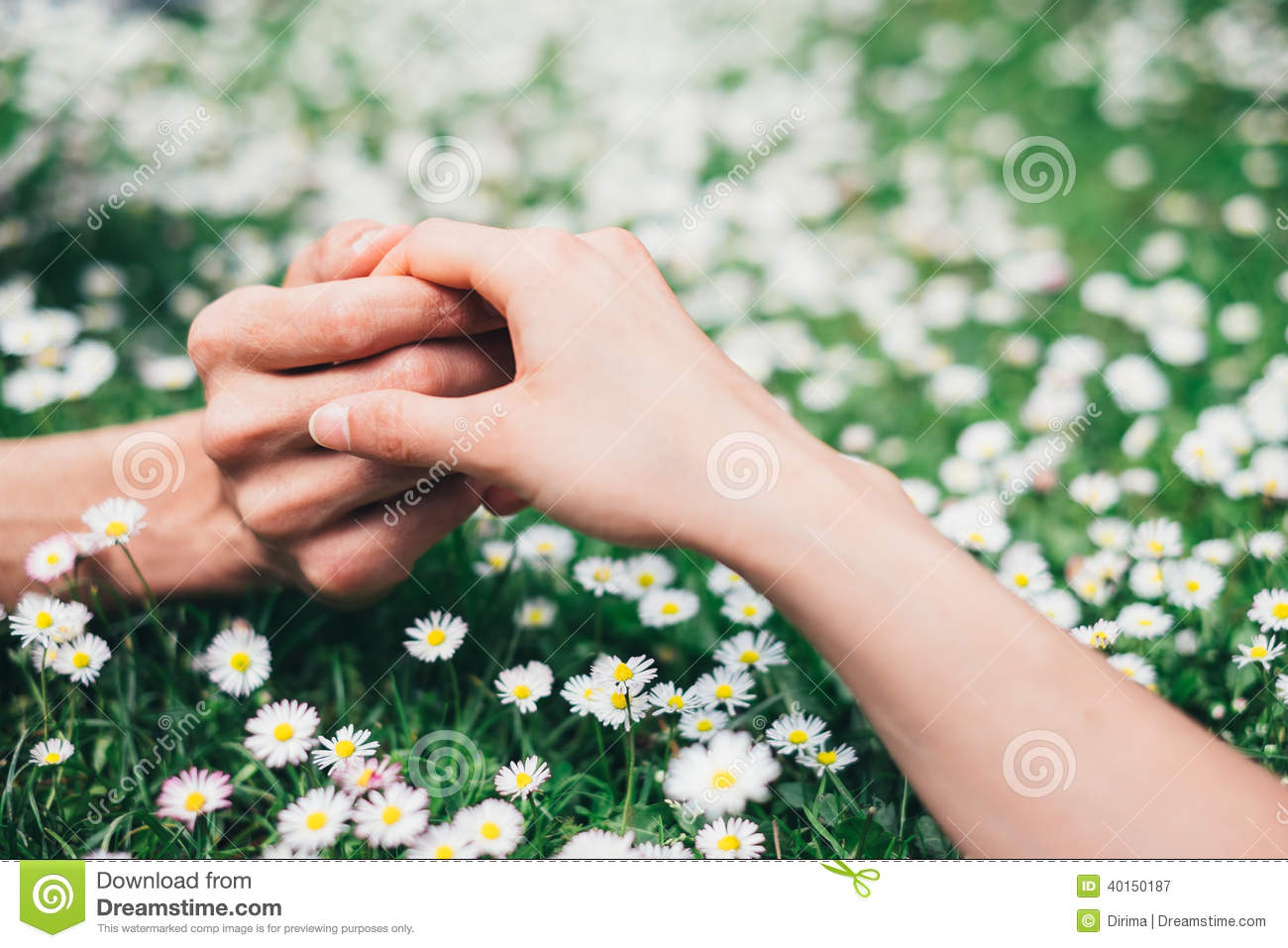 Lovers Holding Hands On Spring Flowers Field Stock Photo ...