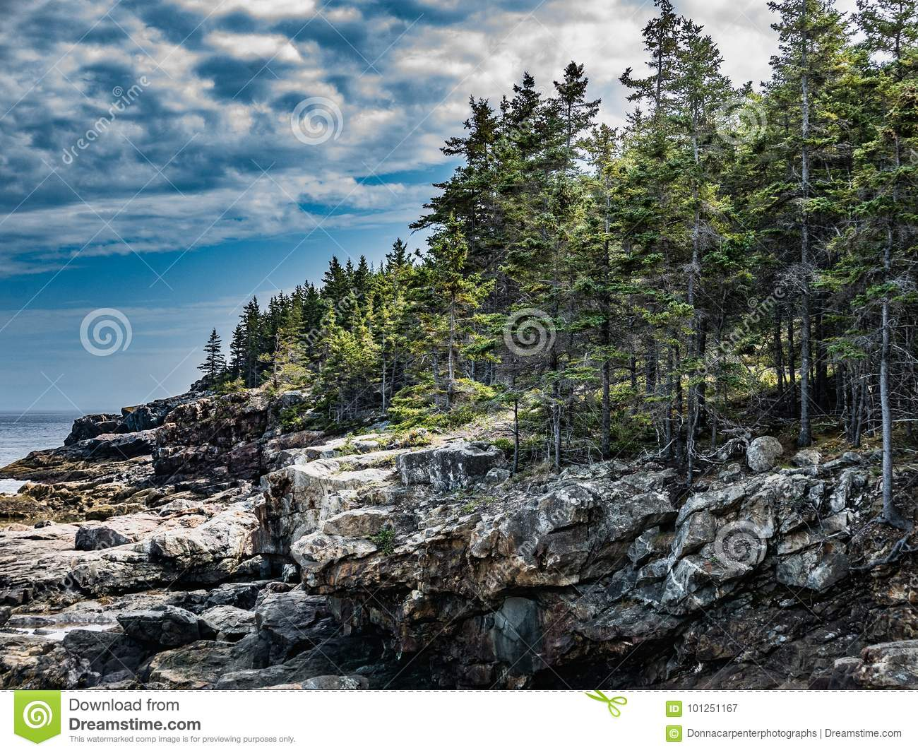 Low Cliffs of Great Head, Acadia National Park