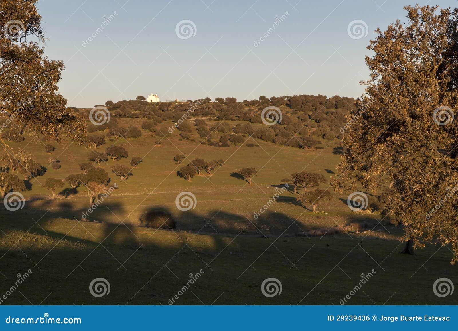 Download Lua Cheia Em Uma Paisagem Rural De Castro, Verde, No Alentejo Foto de Stock - Imagem de verde, iberian: 29239436