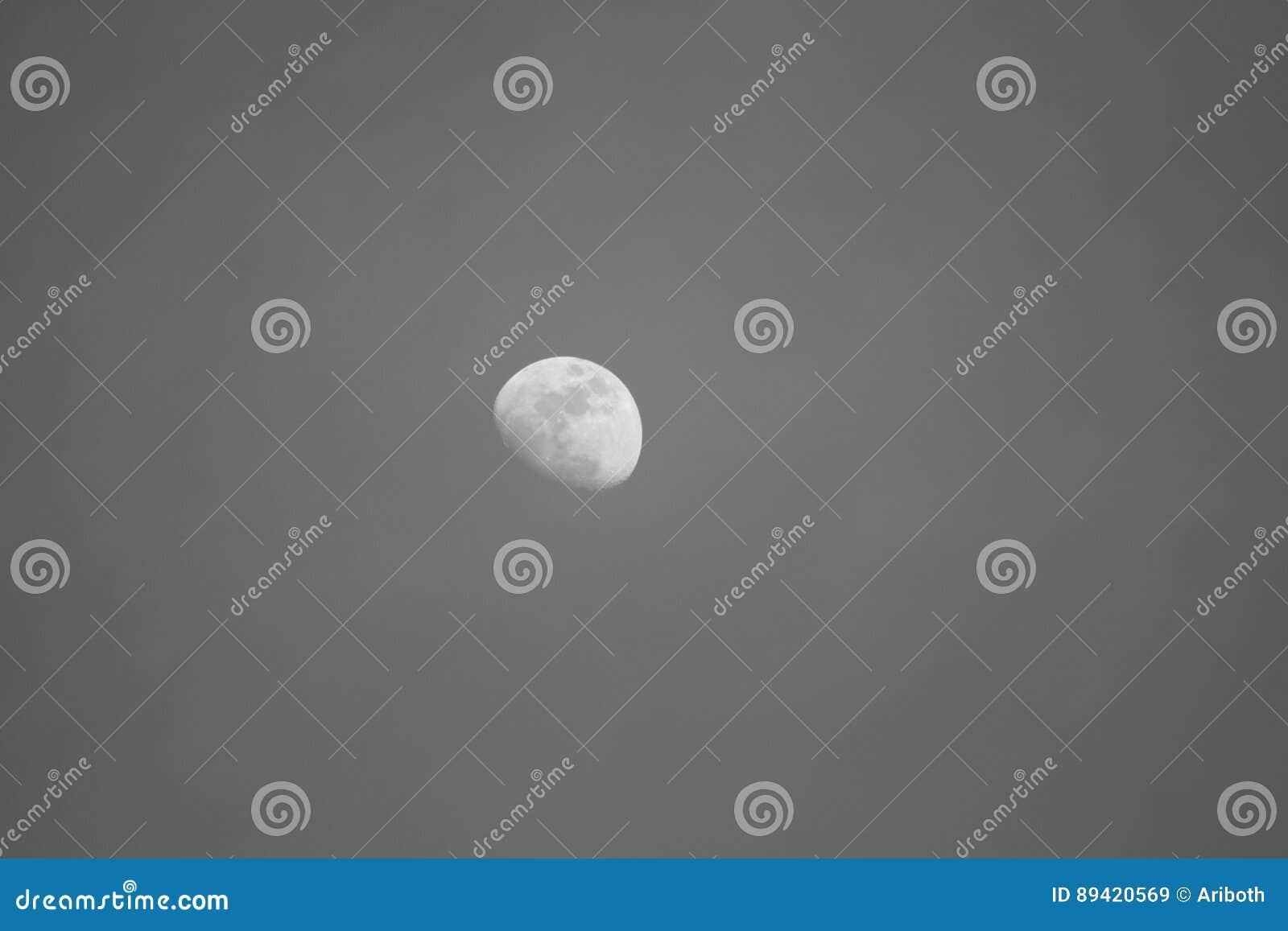 Lua cinzenta e branca