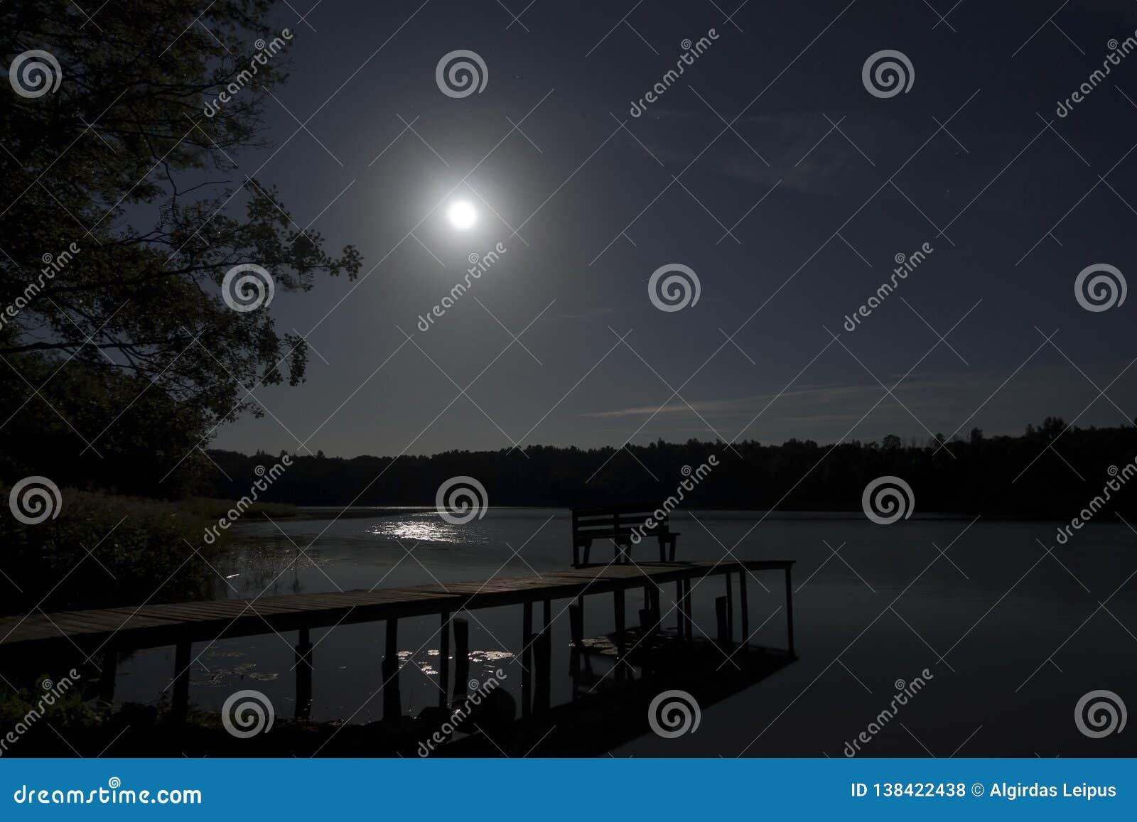 Lua do tolo no lago da floresta com ponte