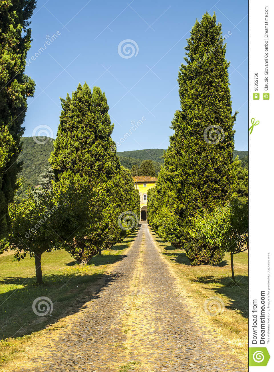 Lucca (Tuscany) - Ancient villa with cypresses