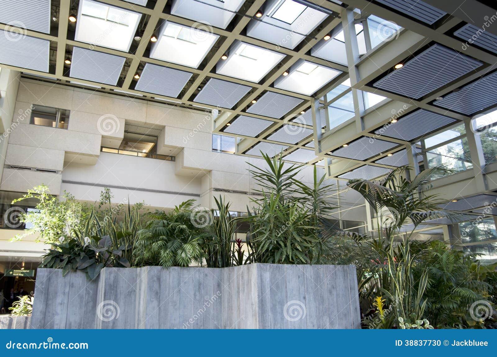 Luce naturale di eco degli interni verdi dell edificio per