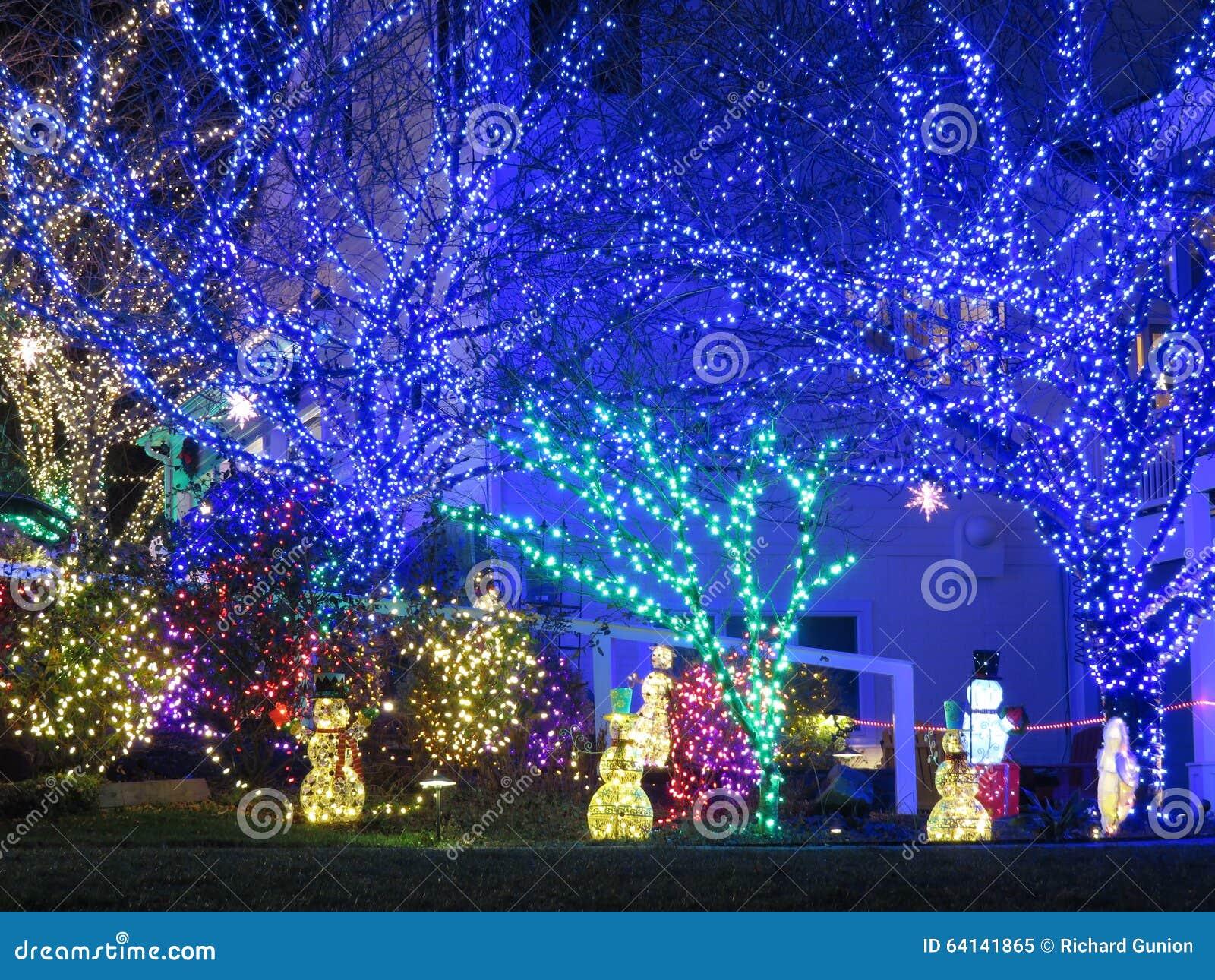 Luces azules de la Navidad en los árboles