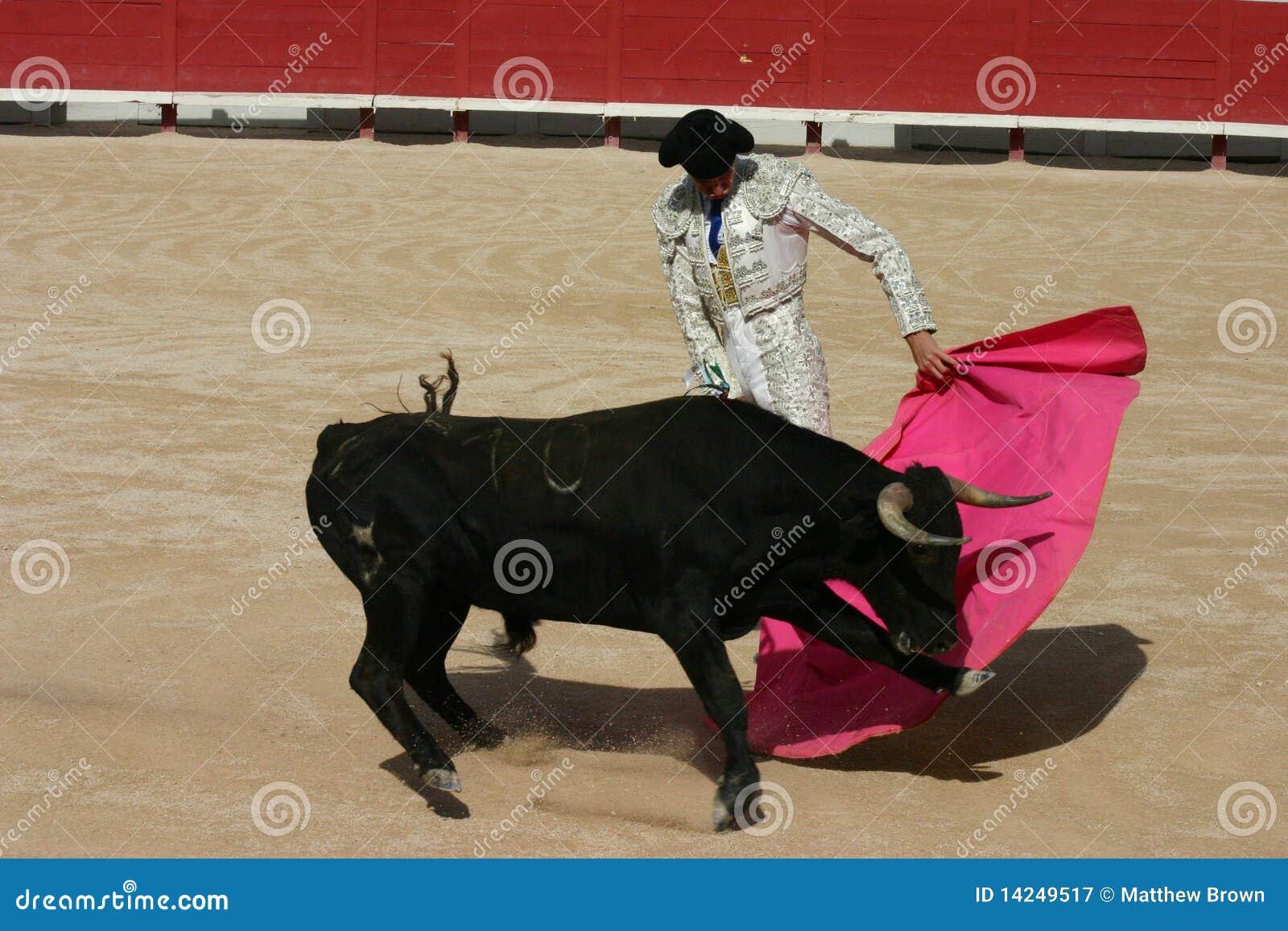 Lucha de Bull Francia
