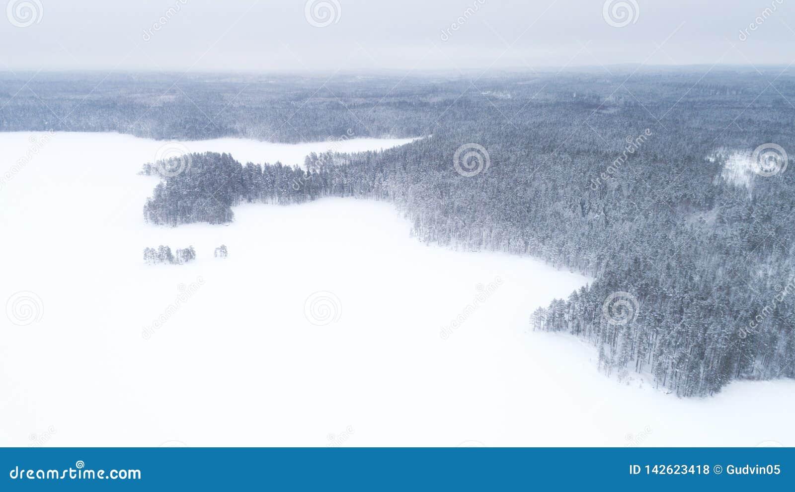 Luchthommelmening van een de winterlandschap Sneeuw behandelde bos en meren vanaf de bovenkant Lucht Photography