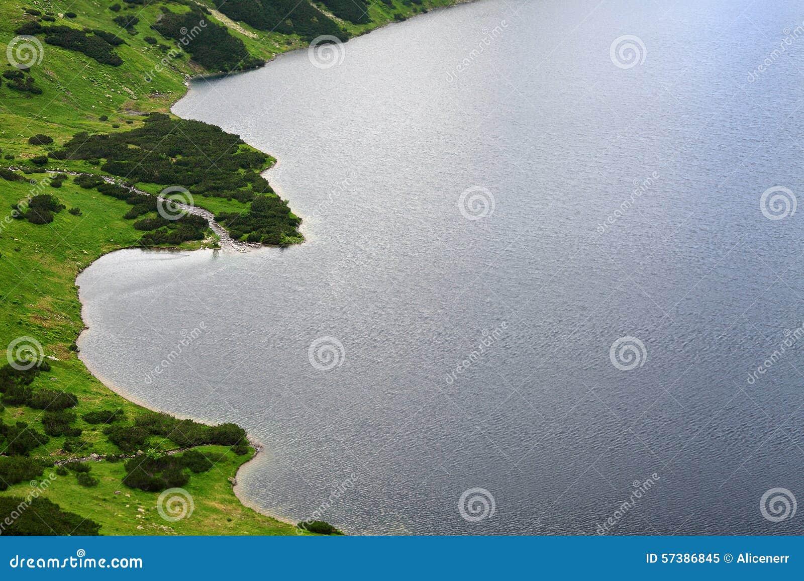 Luchtmening aan meer en omringd groen die land met gras wordt behandeld