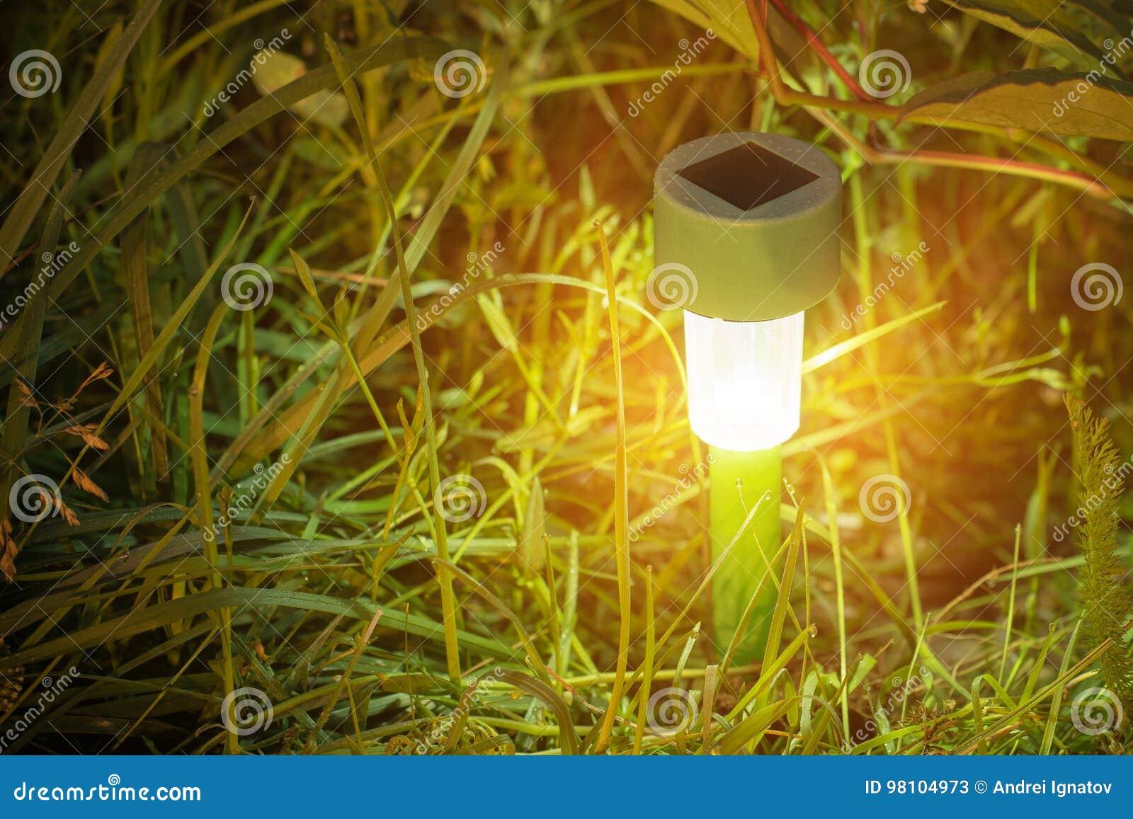 Luci del giardino con la batteria solare immagine stock immagine