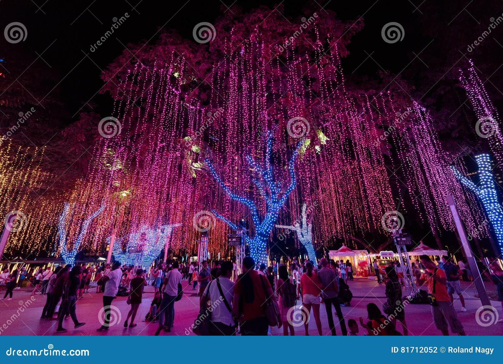 Luci Di Natale Dei Giardini Del Triangolo Di Ayala Fotografia
