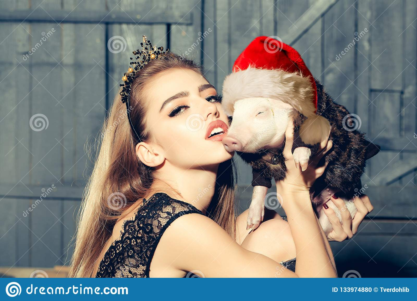 Lucky Pig. Chinese New Year. 2019. The year of the pig. Womans with baby pig with christmas hat celebrating Chinese New
