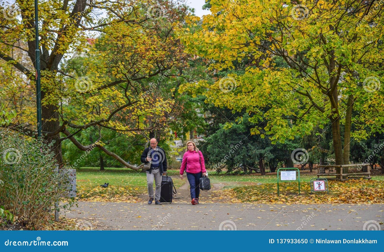 Ludzie chodzi przy jesień parkiem