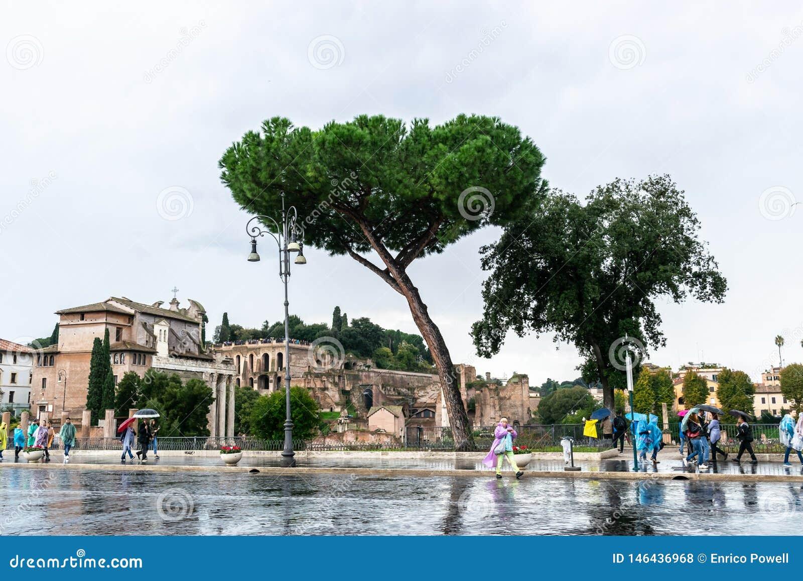 Ludzie dalej Przez Dei Fori Imperiali ulicy przy ruiny forum Augustus forum Romanum w Rzym, Włochy