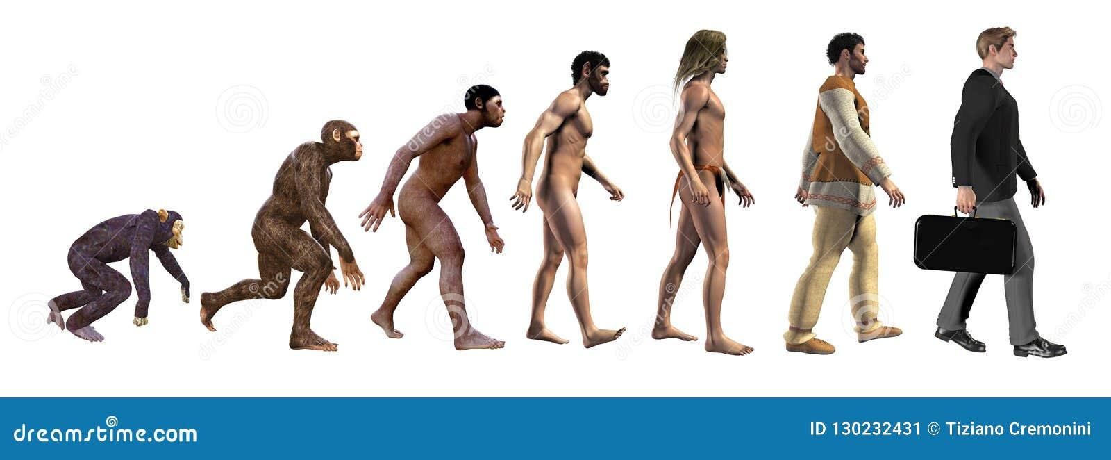 Ludzka ewolucja od małp biznes, 3d ilustracja