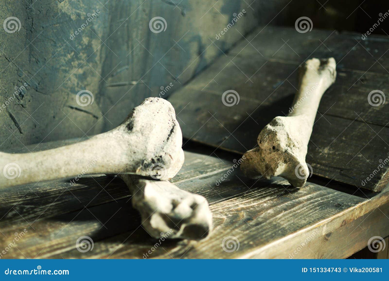 Ludzka krew kłama na drewnianym łóżku w kamerze