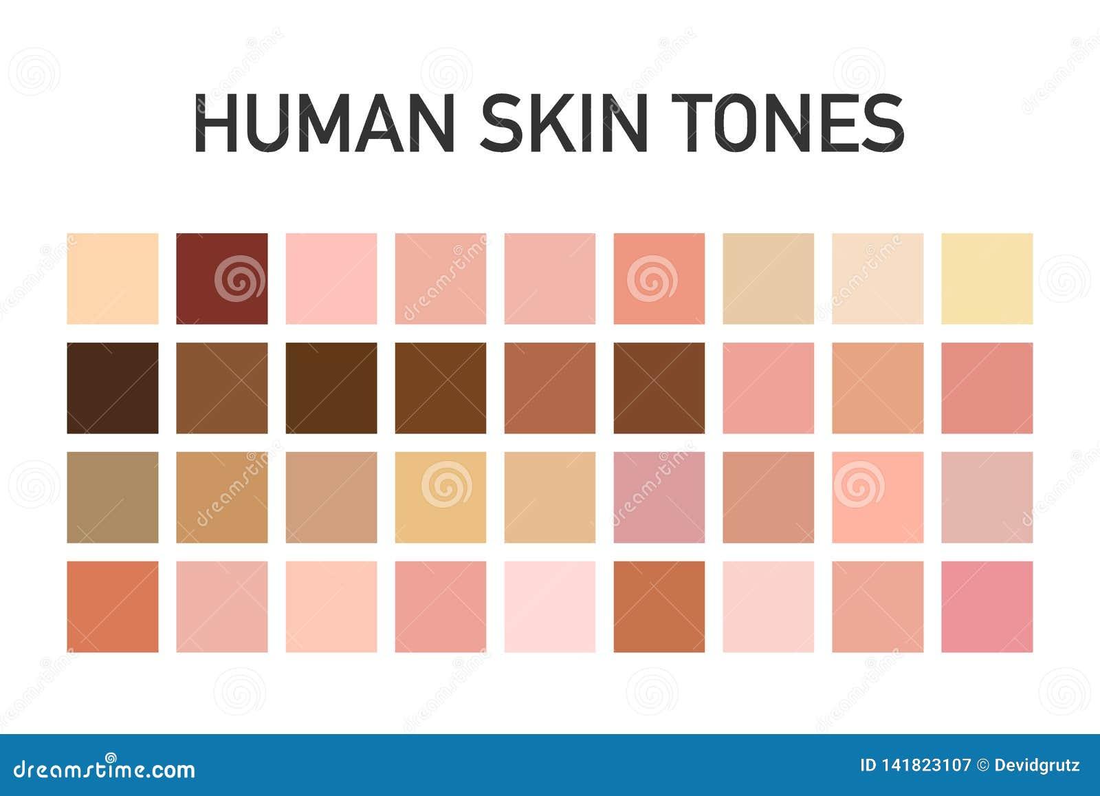 Ludzka skóry brzmienia koloru paleta ustawia odosobnionego na przejrzystym tle Sztuka projekt również zwrócić corel ilustracji we