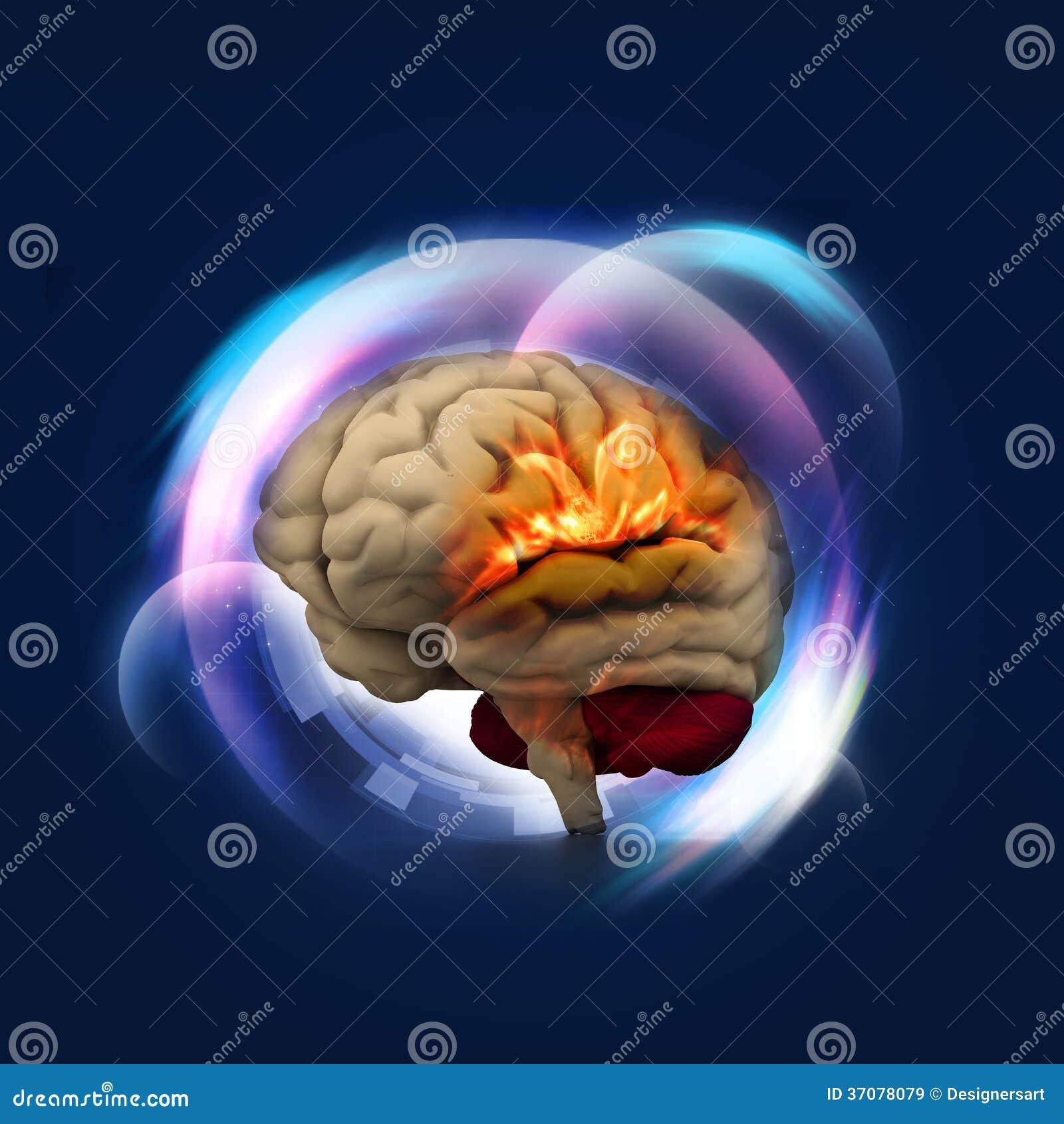 Download Ludzki mózg ilustracji. Ilustracja złożonej z stary, kruszcowy - 37078079