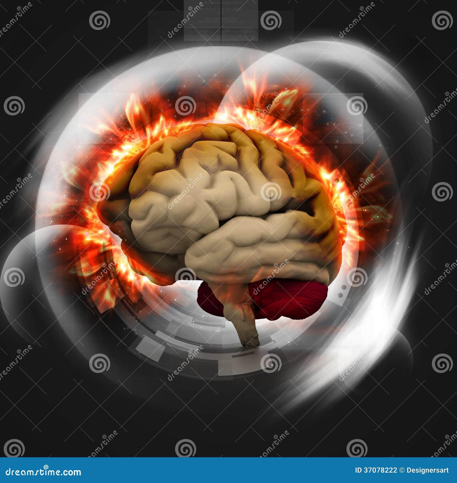 Download Ludzki mózg ilustracji. Ilustracja złożonej z intelekt - 37078222