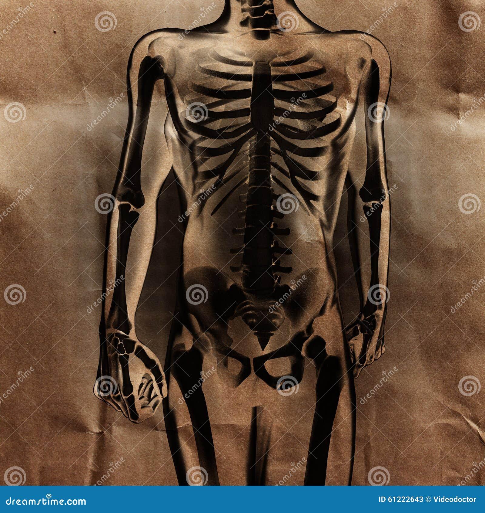 Ludzki prześwietlenie obraz cyfrowy z kościami malować