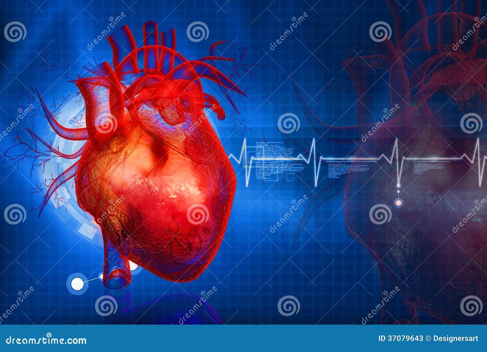Download Ludzki serce ilustracji. Ilustracja złożonej z cyrkulacja - 37079643