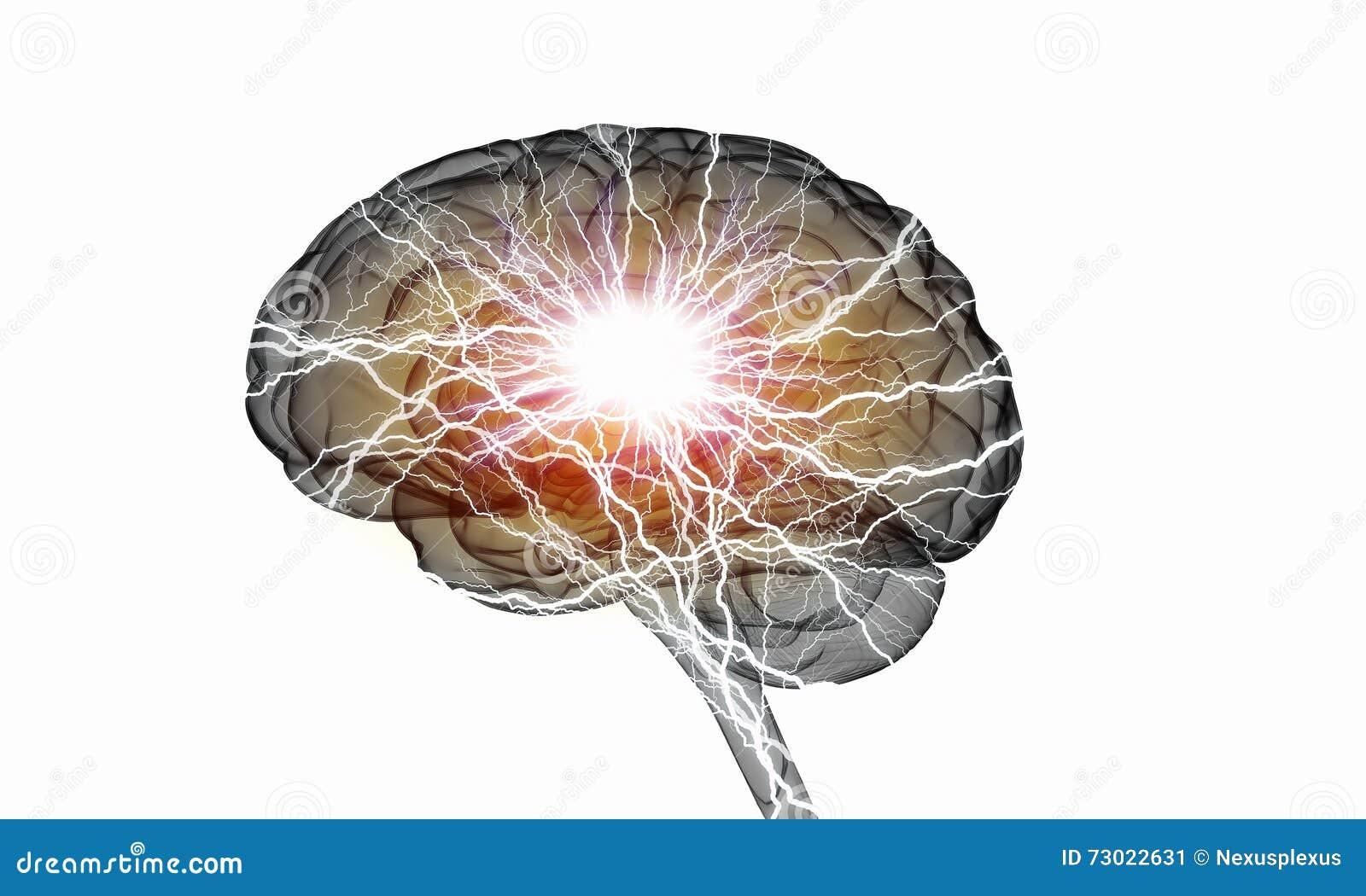 Ludzkiego mózg bodziec
