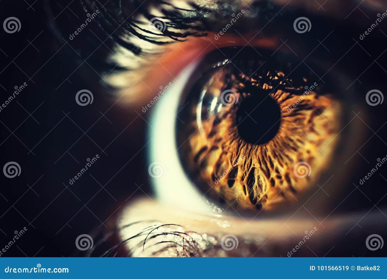 Ludzkiego oka makro- strzał