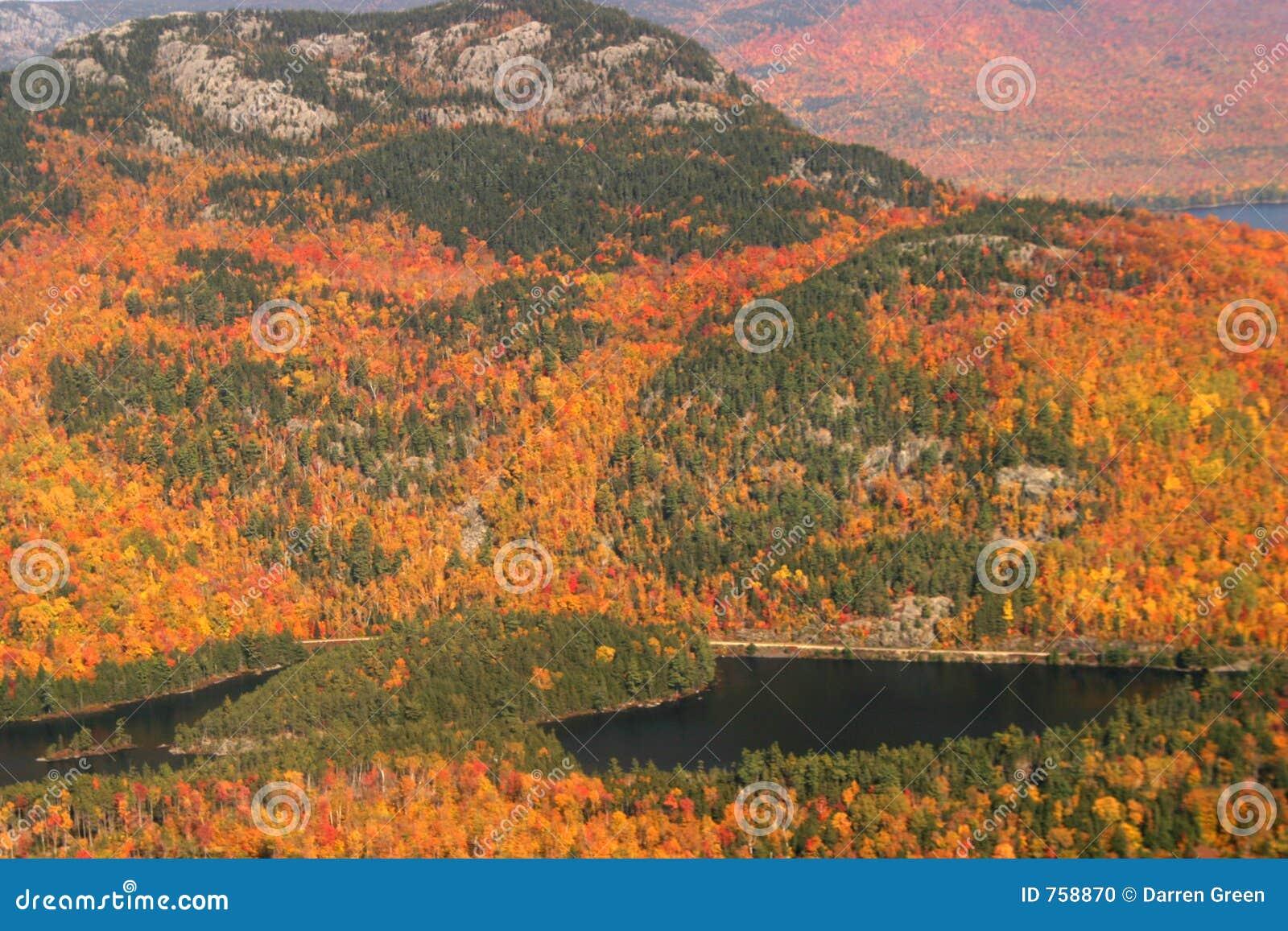 Luftaufnahme der ändernden Fallfarben von Neu-England