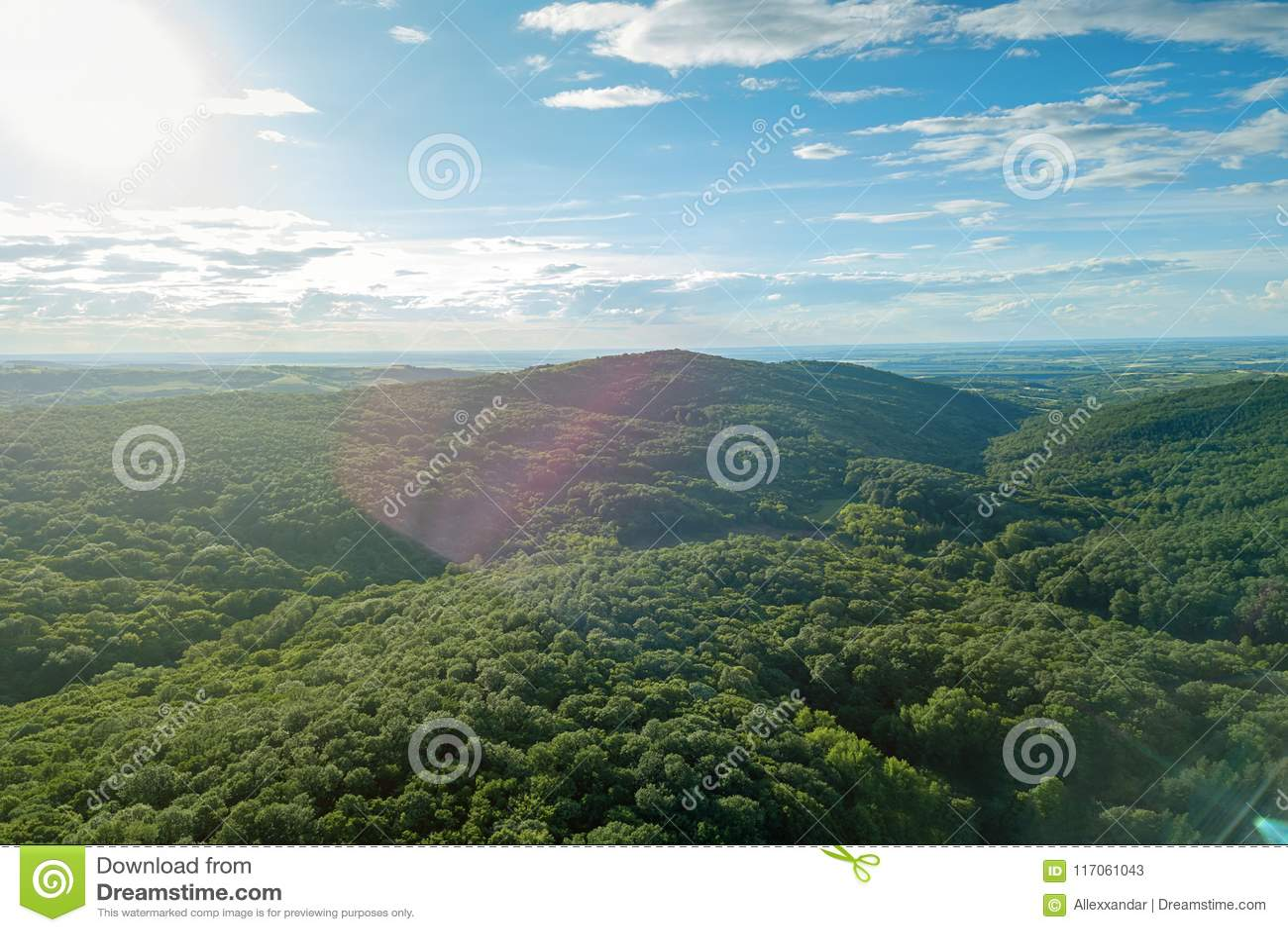 Luftwaldlandschaft Europäer-Forest Beautiful-Berg