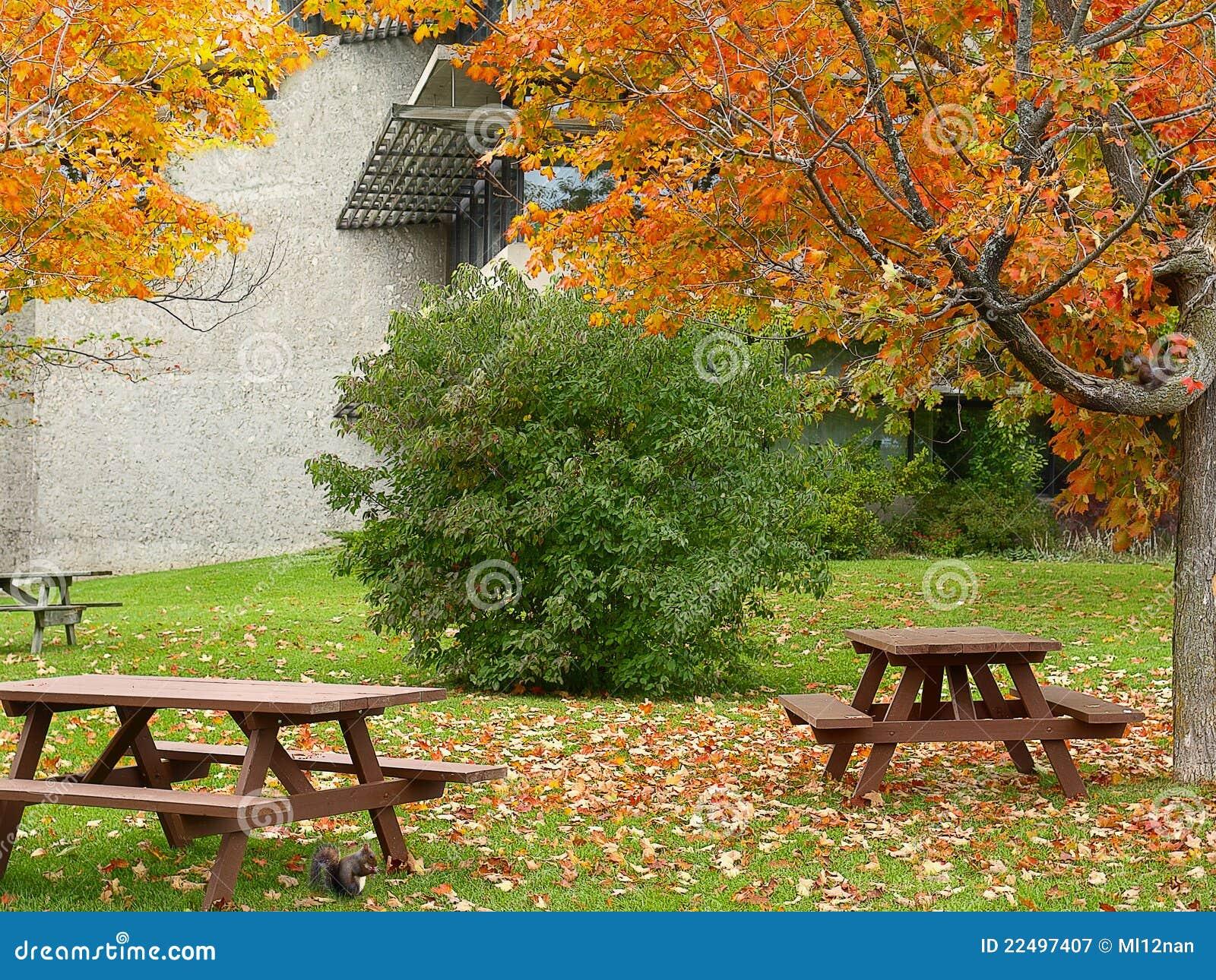 Lugar de la comida campestre