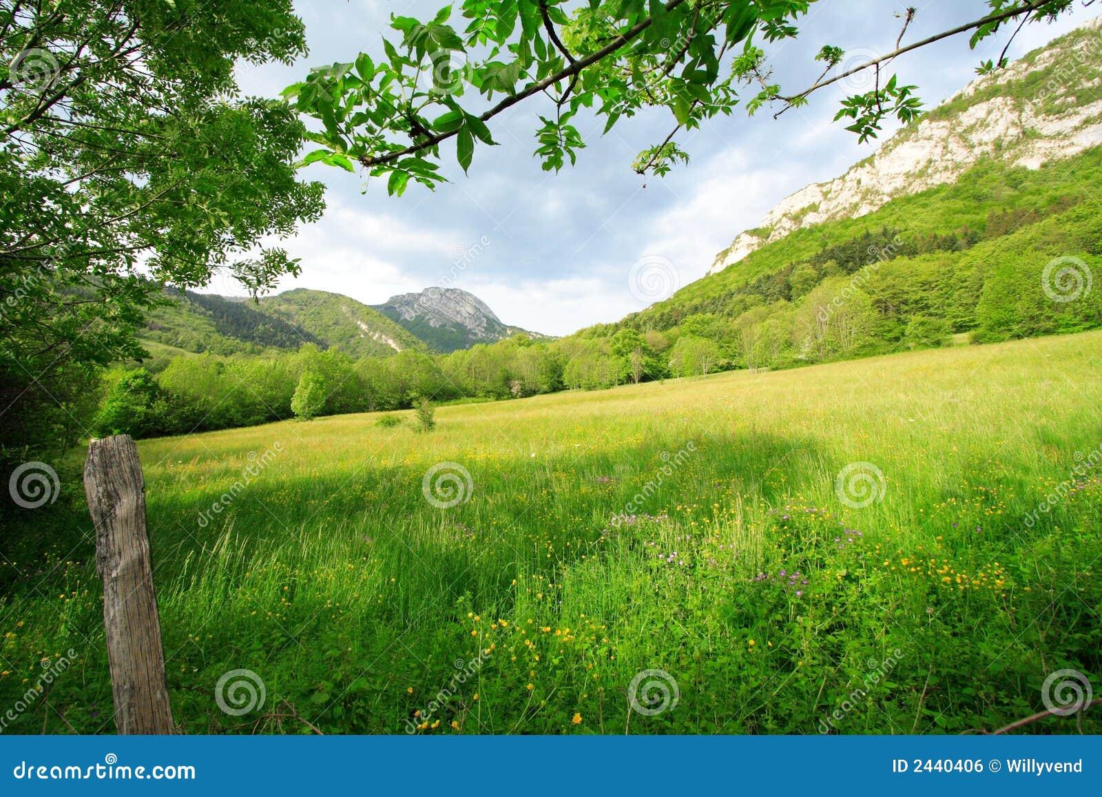 Bahay Kubo Design Lugar Rural Verde Ao Descanso Imagem De Stock Royalty Free