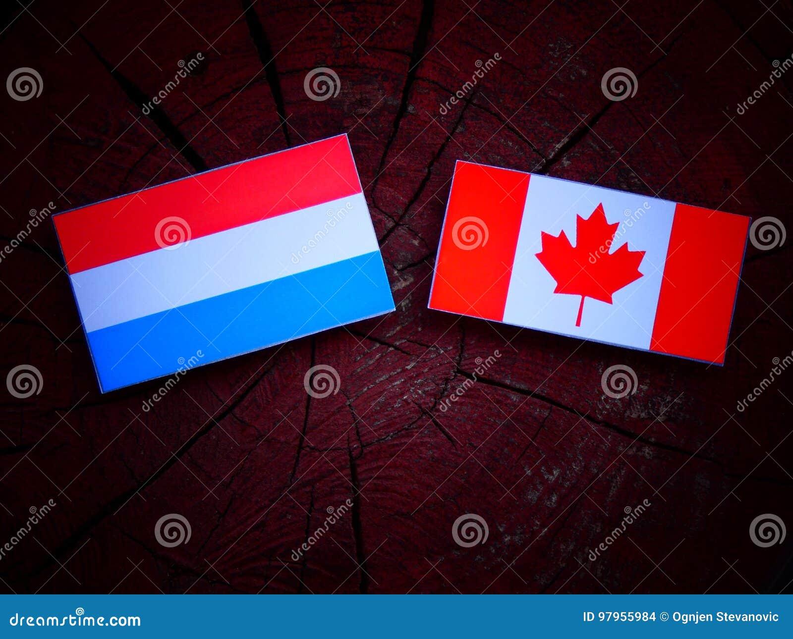 Luksemburg zaznacza z kanadyjczyk flaga na drzewnym fiszorku odizolowywającym