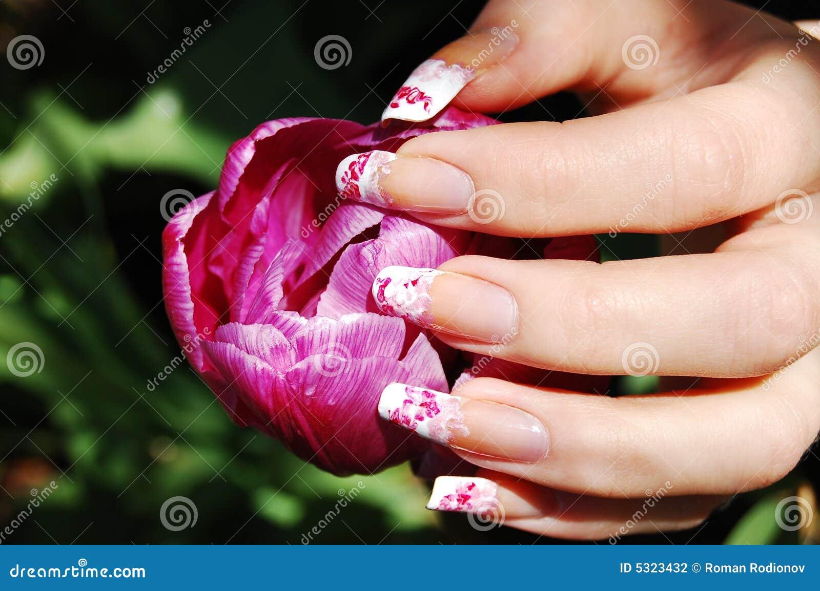 Download Lulling il tulipano fotografia stock. Immagine di luminoso - 5323432