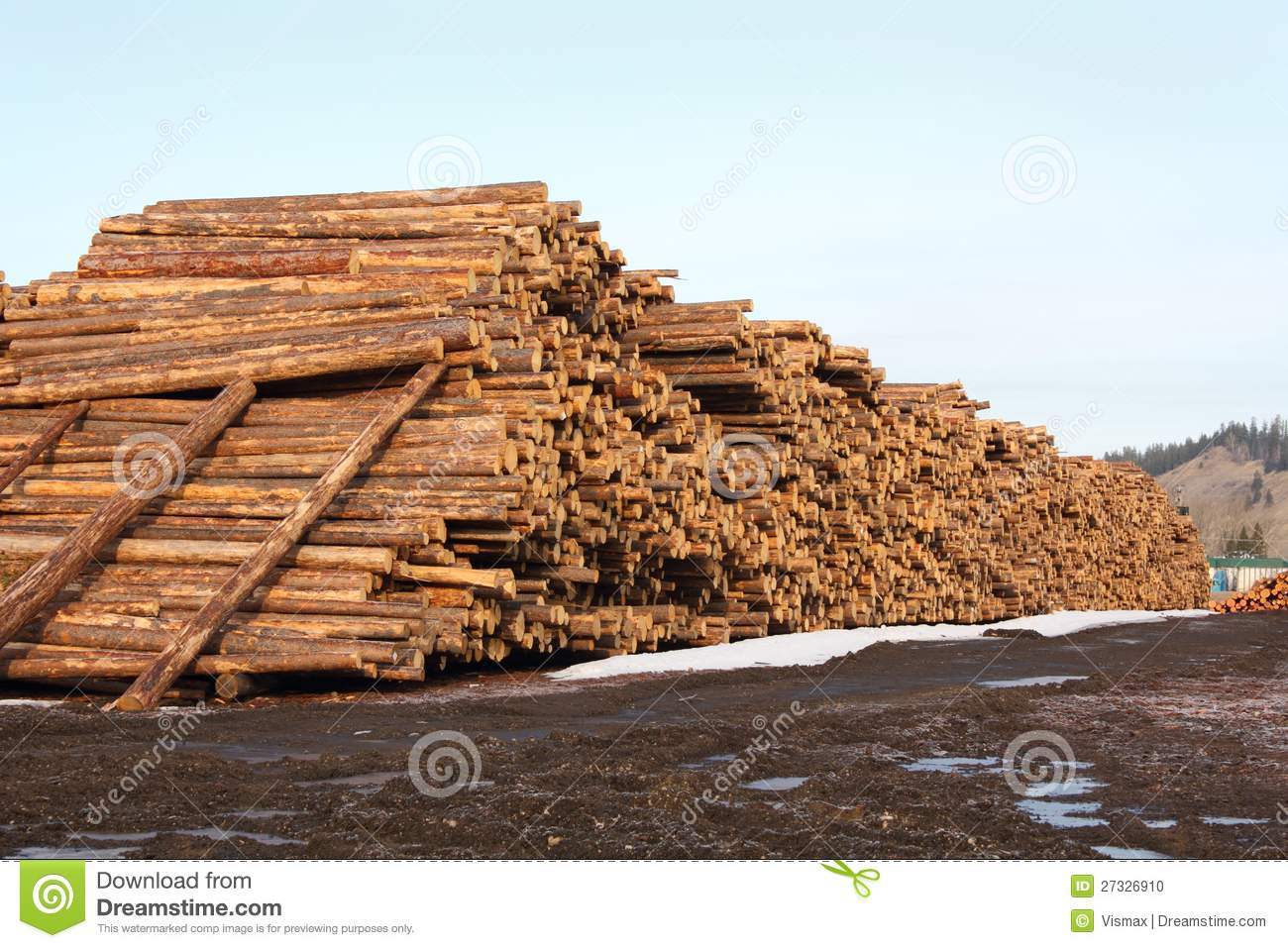 Lumber mill log pile stock photo image of canada for Mill log