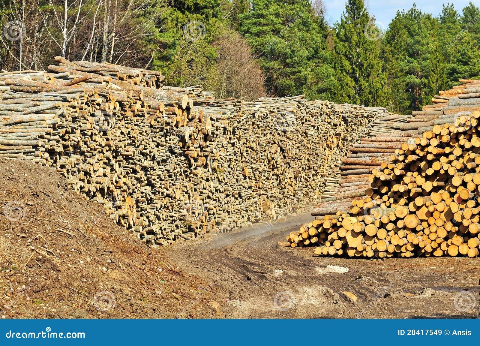 Lumber pile royalty free stock images image